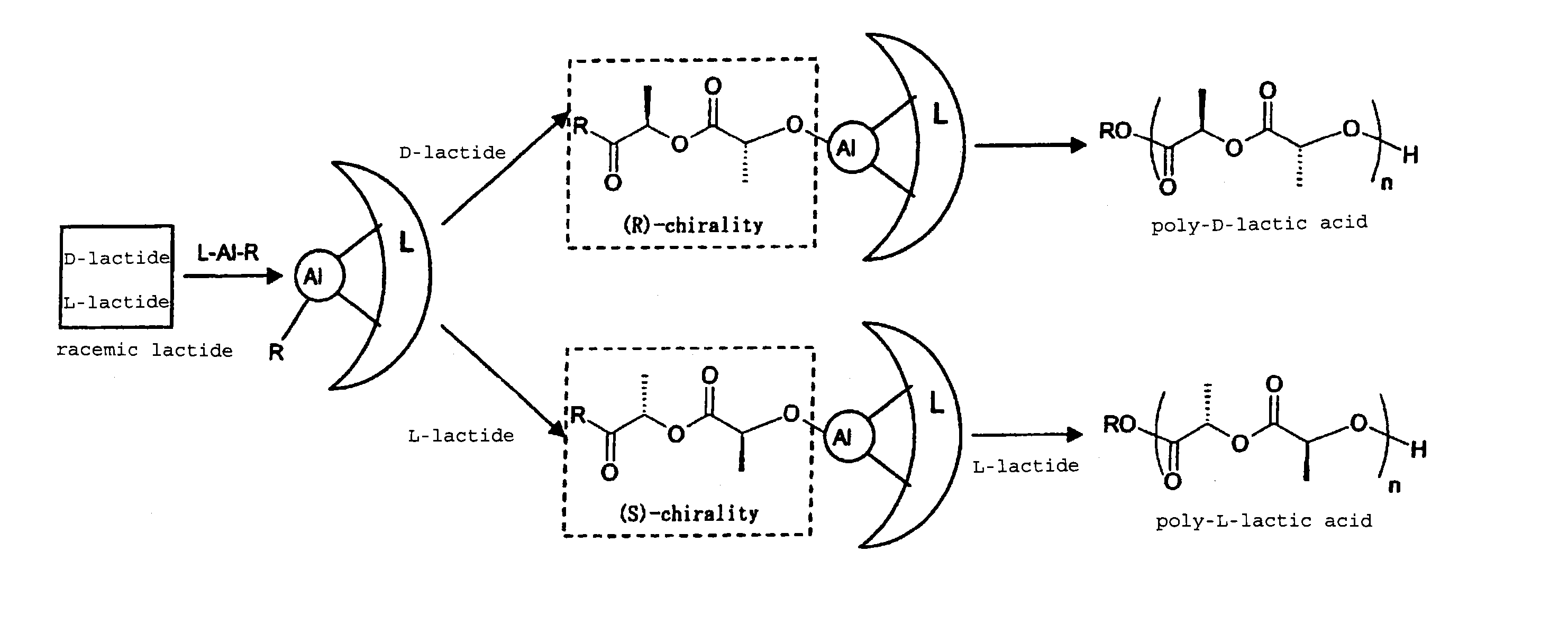 organism used to synthesise phb Certain strains of bacillus subtilis bacteria can be used to produce polyhydroxyalkanoates  phb is similar in its material properties to polypropylene (pp), has a.