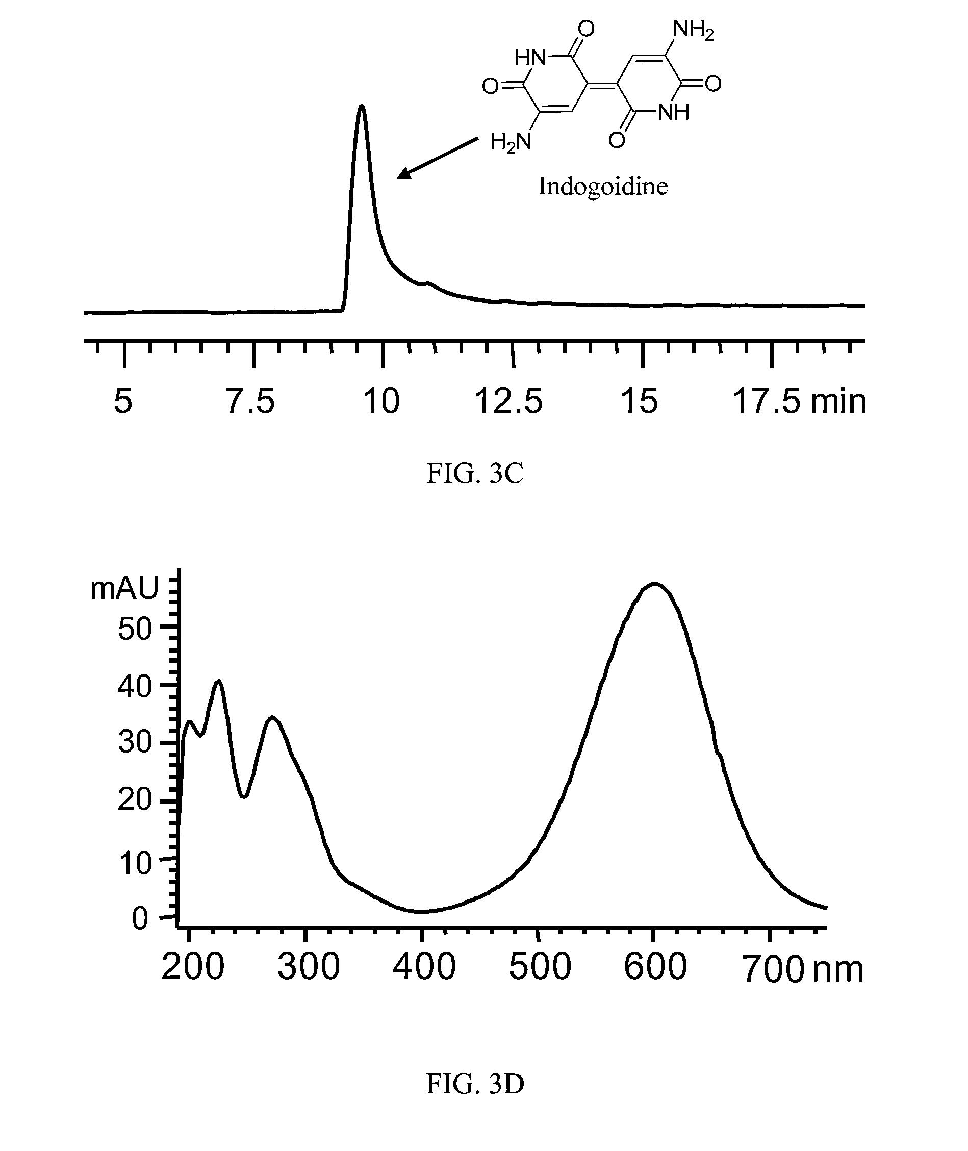 clavamox 625 no perscription