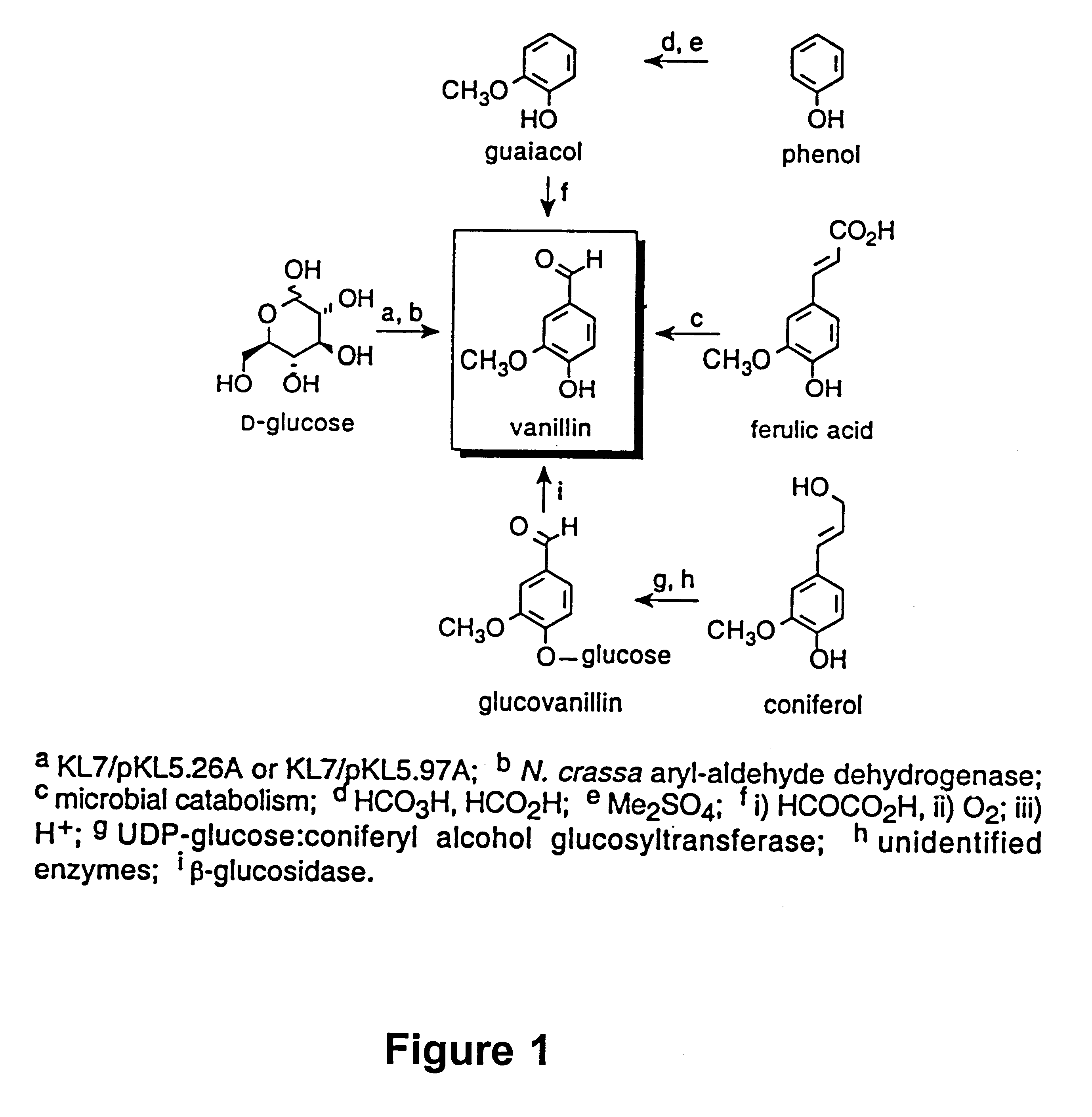 a novel dehydration reaction of steroid alcohols