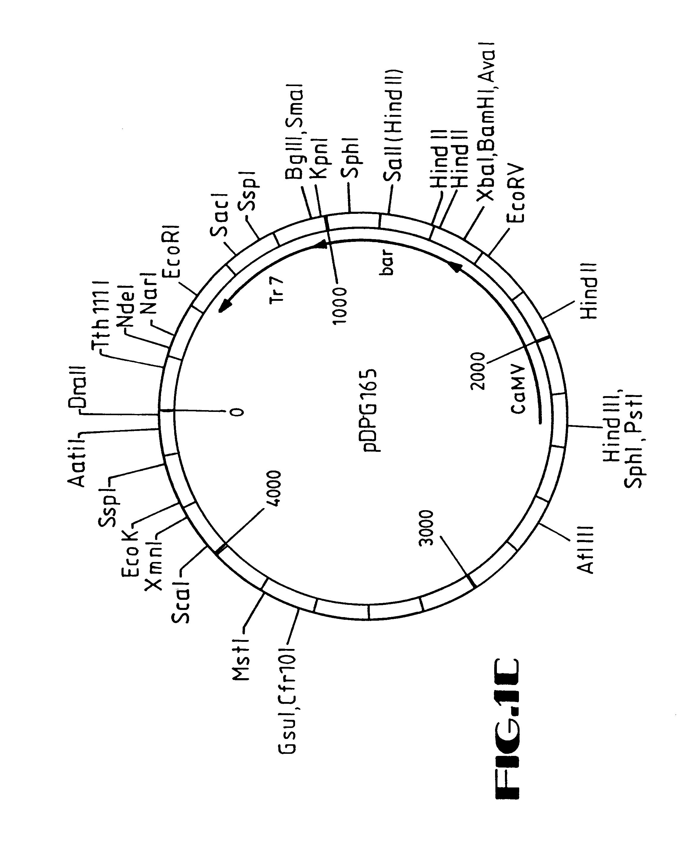 pioneer deh 2700 wiring diagram  pioneer  get free image