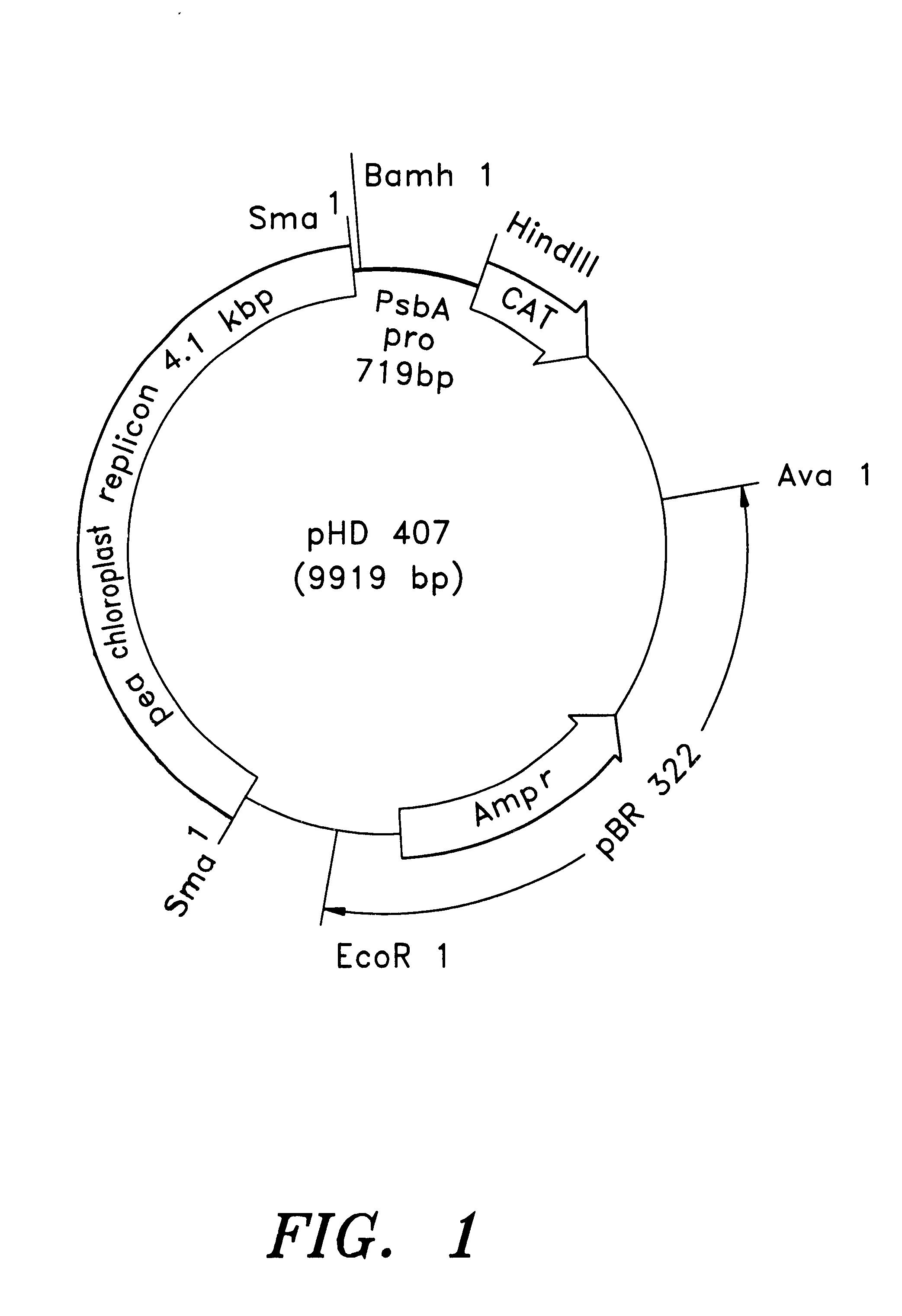 patent us6680426