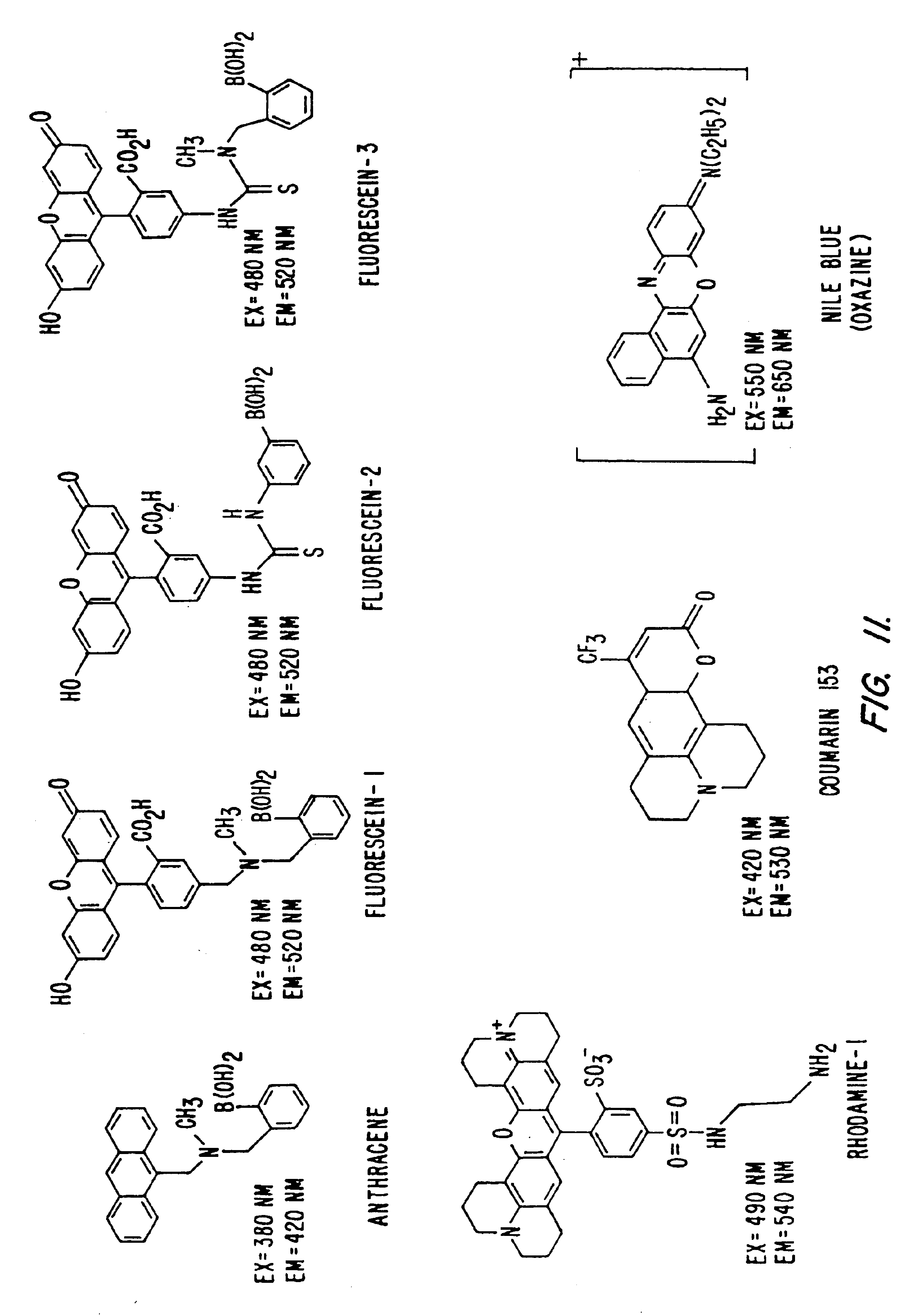 detection of biological molecules - detection of biological molecules introduction: without carbon, nitrogen, hydrogen, sulfur, oxygen and phosphorus, life wouldn't exist these are the most abundant elements in living organisms these elements are held together by covalent bonds, ionic bonds, hydrogen bonds, and disulfide bonds.