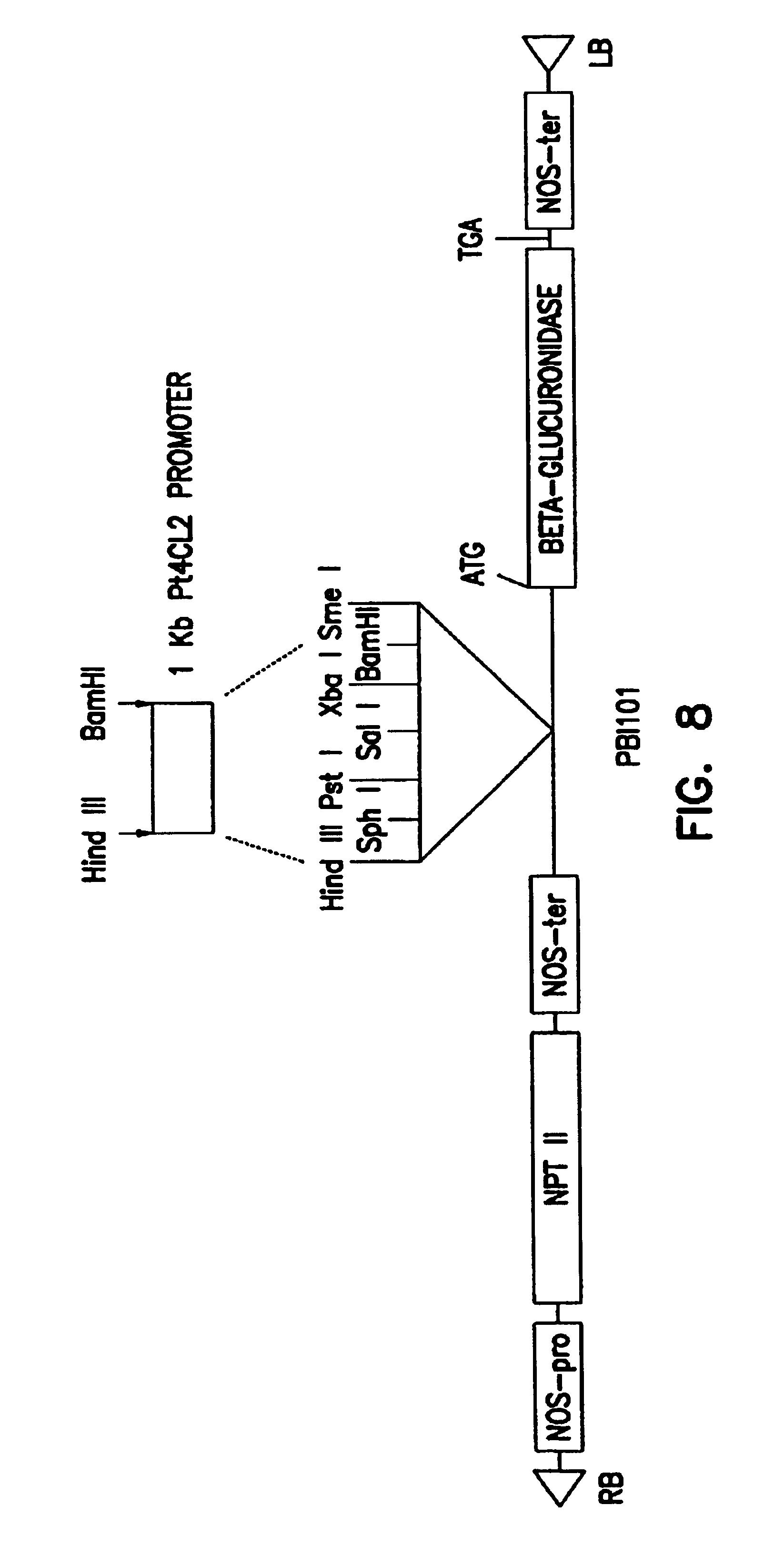 patent us6969784