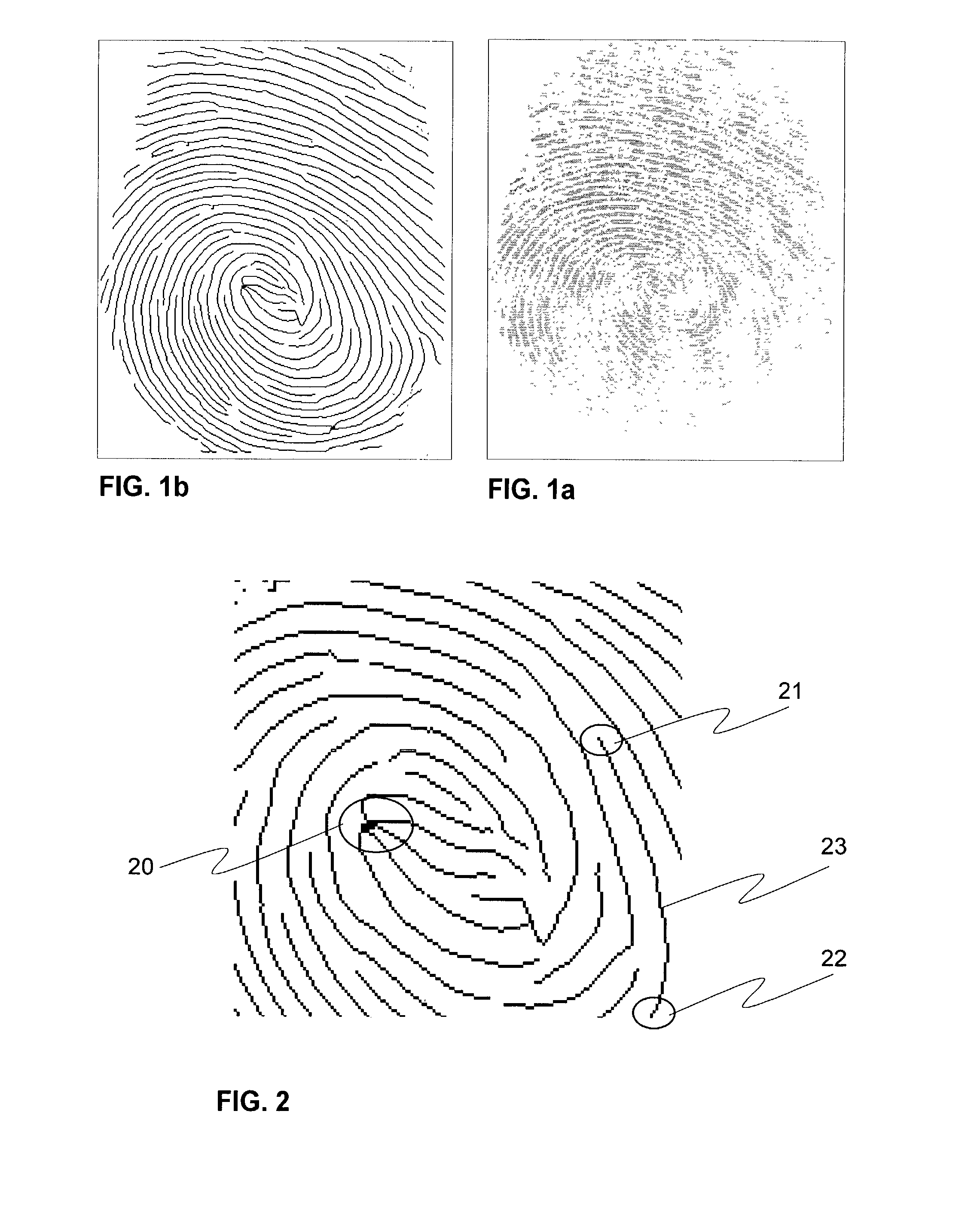 the popularity of biometrics as an identification method Biometric authentication: what method works best each of the different methods of biometric identification have something to recommend them hand geometry biometrics hand geometry readers work in harsh environments.