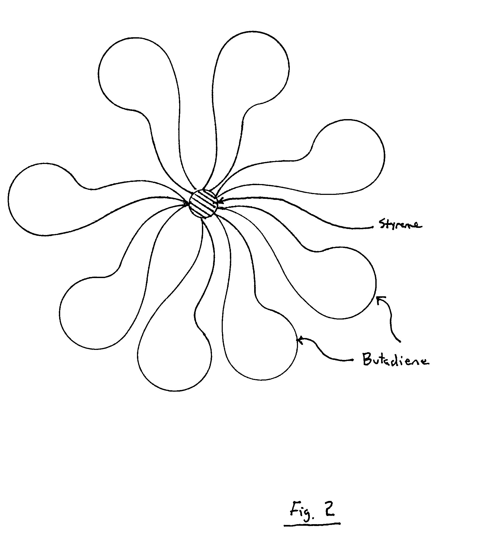 Patent US Polymeric nano particles of flower like structure and appl