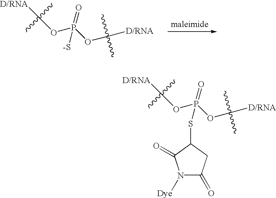 sythesis using During the 1950s and 1960s, it became apparent that dna is essential in the  synthesis of proteins among many functions, proteins can serve as enzymes and .