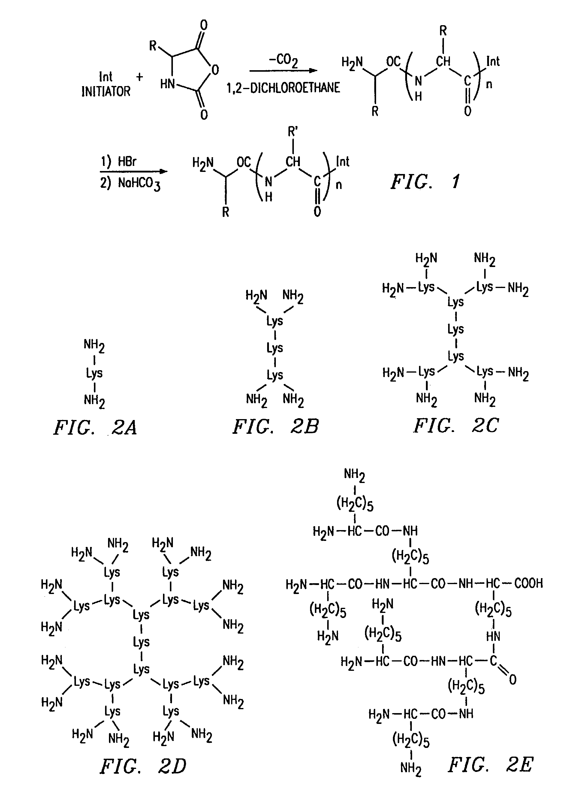 Patent US7261875 - Dendritic poly (amino acid) carriers ... Amino Group Sketch