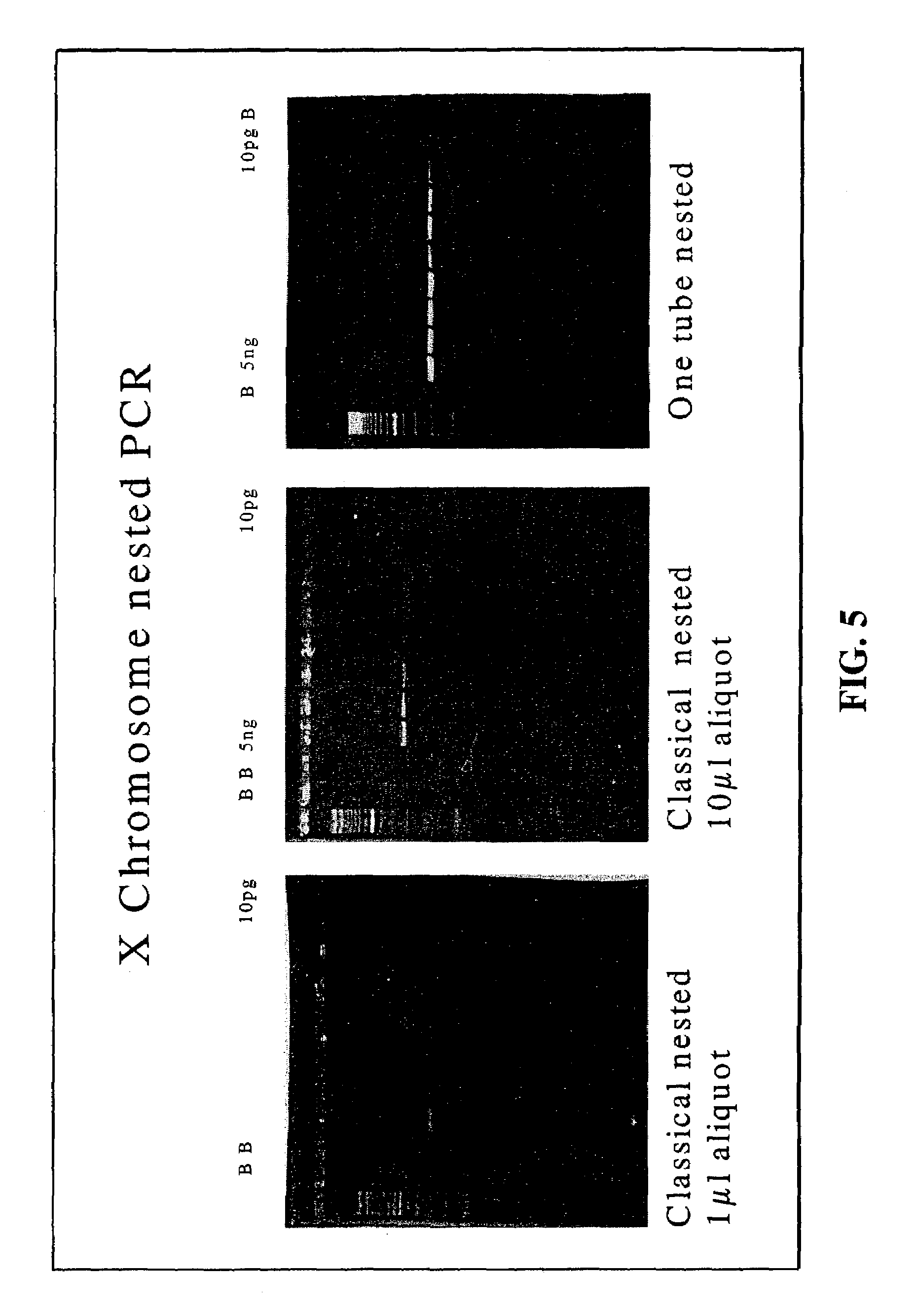 provisional patent template uspto - patent us7273730 nested pcr employing degradable primers