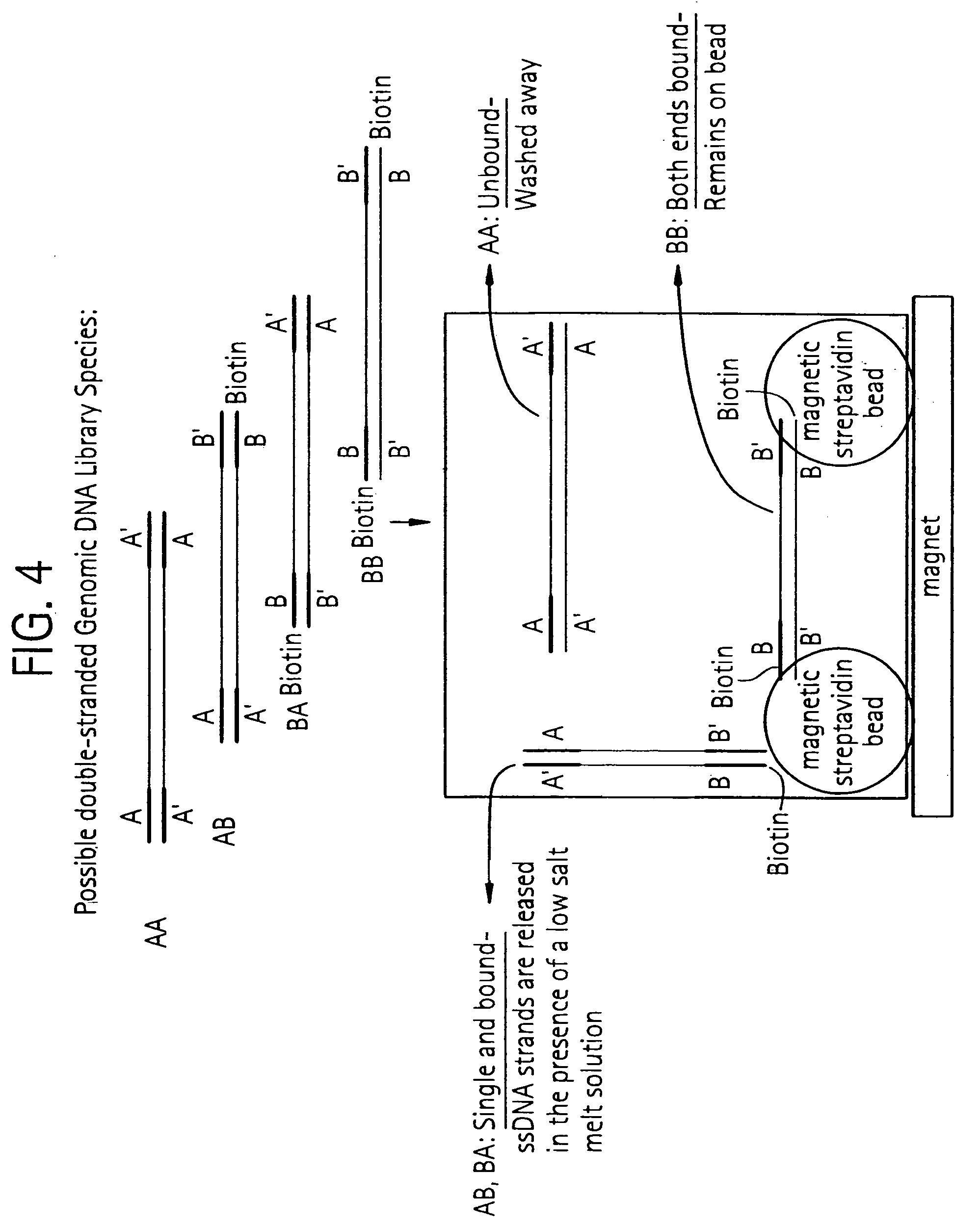 Mars Motor 10587 Wiring Diagram as well Generac 5500 Watt Portable Generator Parts besides Maxon Valve Wiring Diagram besides Lynx Portable 125 Kw Wiring Diagram also Intertherm 7 Wire Thermostat Wiring Diagram. on honeywell 5000 wiring diagram