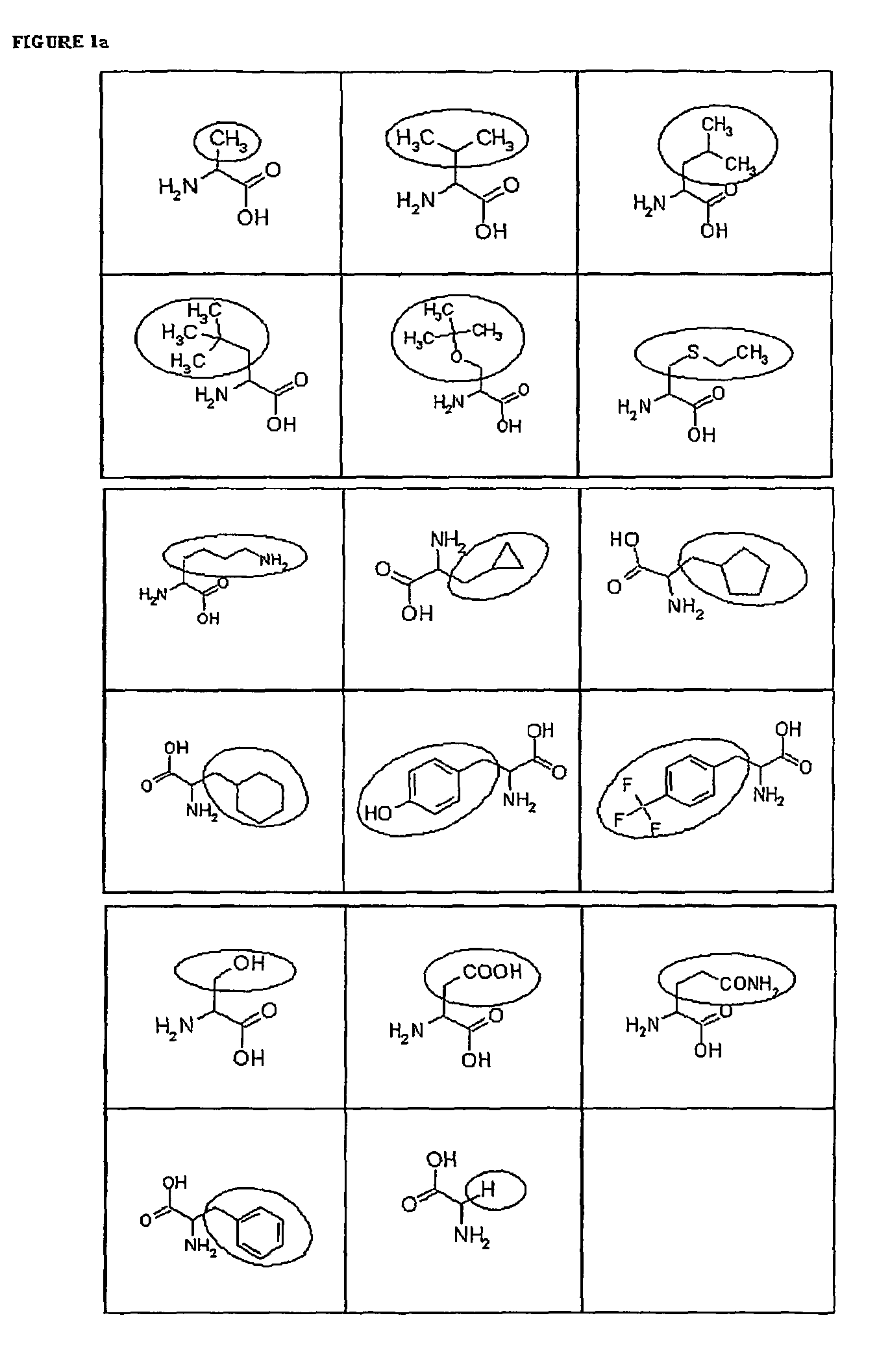 compounds with nootropic action, their preparation