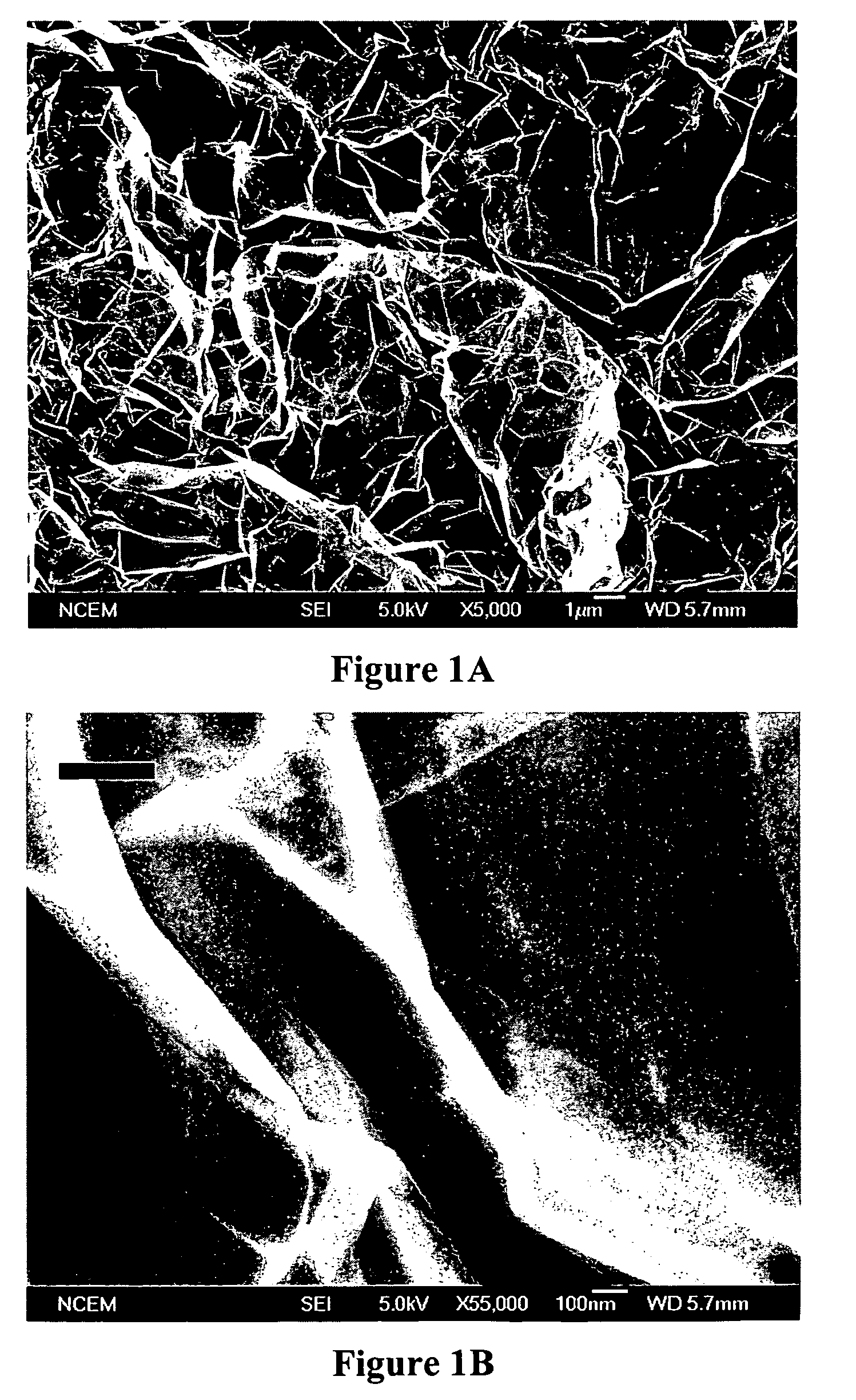 carbon nanostructures The properties and application of carbon nanostructures 177 polyvinyldifluoride and polypropylene, which significantly enhanced its attractiveness of.