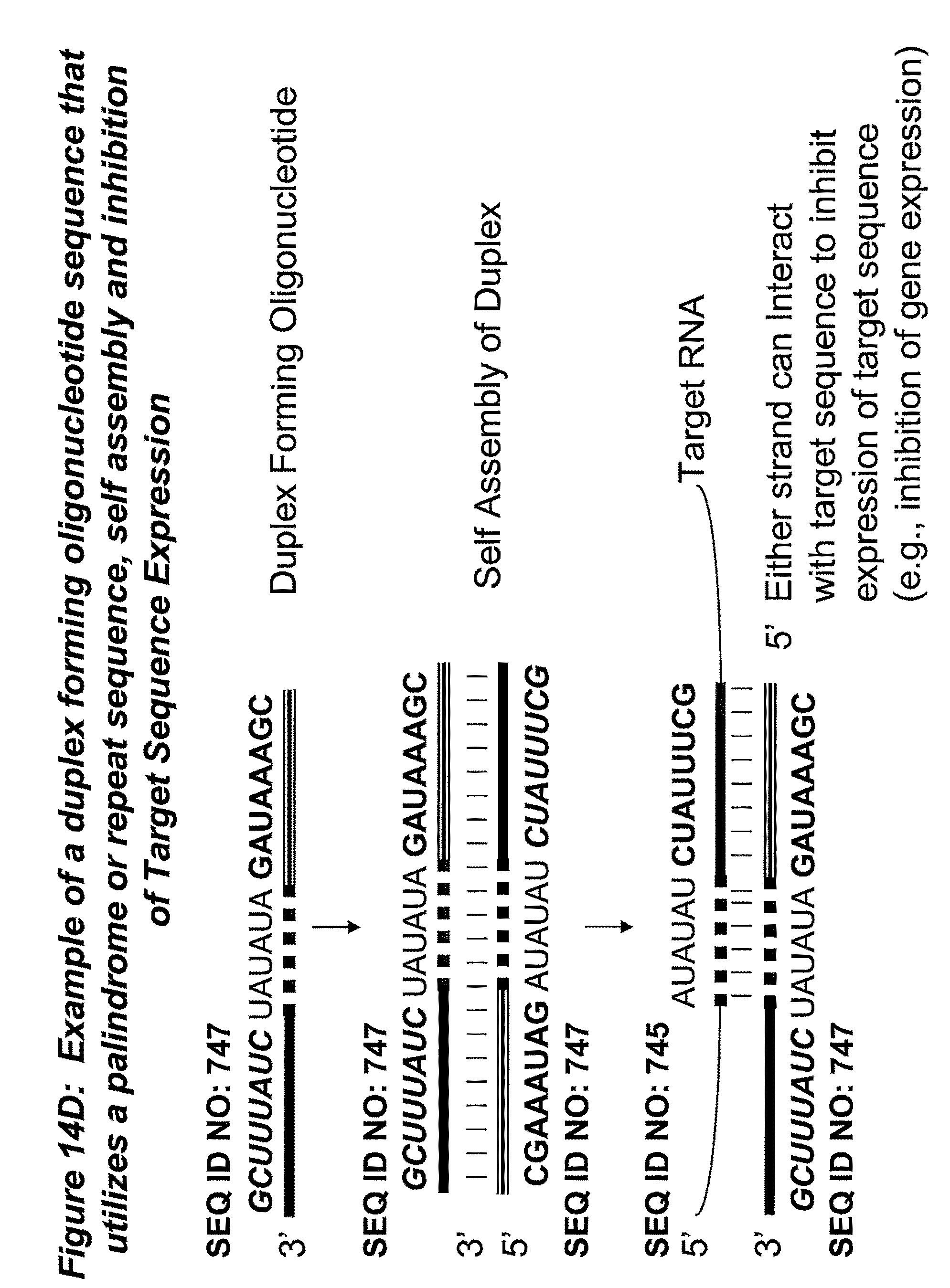 expression and purification of human platelet derived Expression and purification of non-prolyl cis-peptide bond mutants in human plasma platelet activating factor acetylhydrolase author: woerner, kaitlyn.