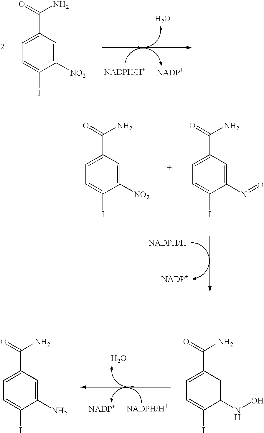 heterocycles types and biosynthesis Synthesis and angiotensin ii receptor antagonistic activities of benzimidazole derivatives bearing acidic heterocycles as novel tetrazole bioisosteres1 drug metabolism reviews 2010 42.