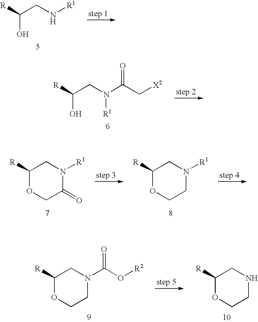 propionate kinase 2