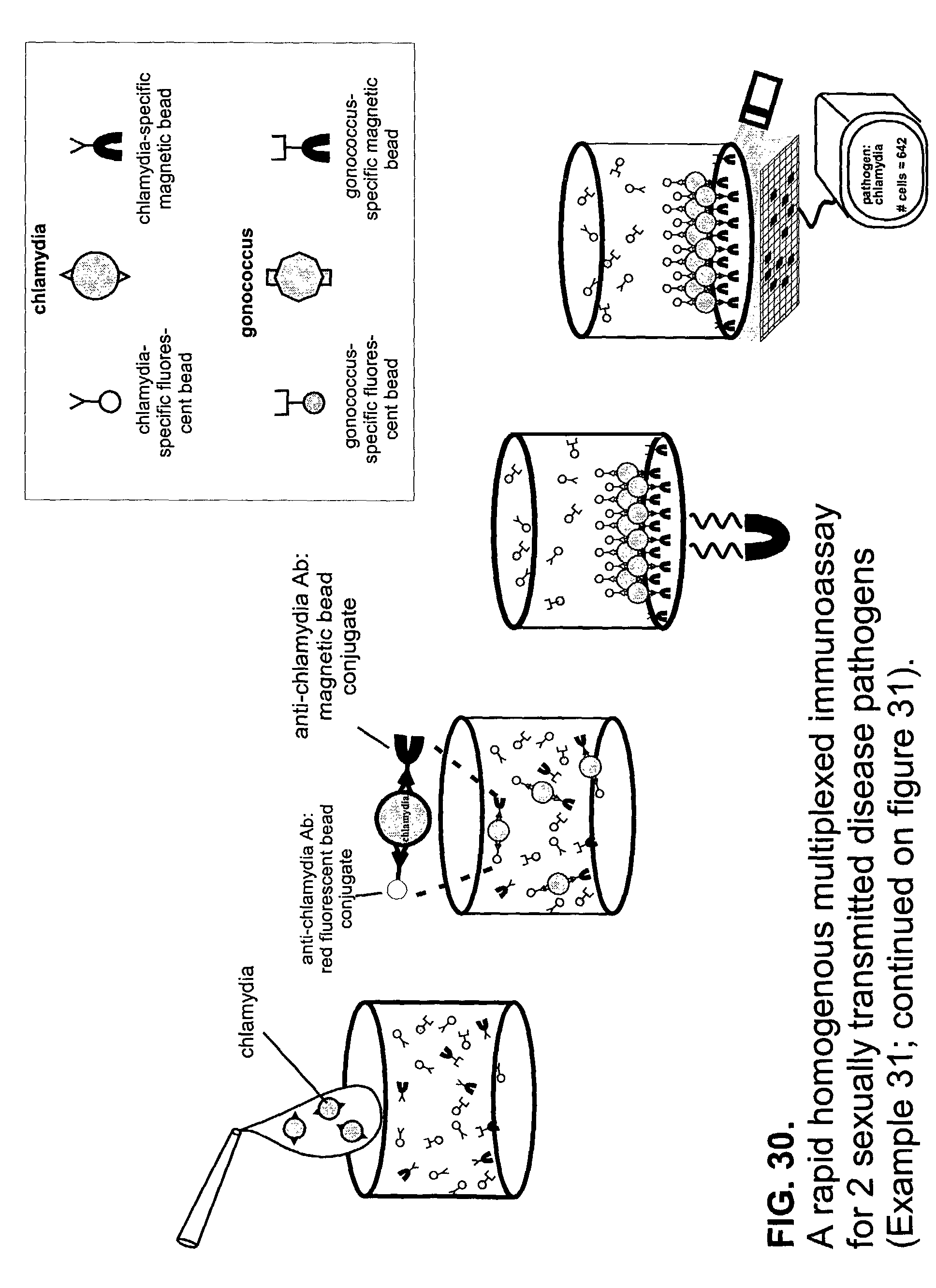 diagram of cell culture steps