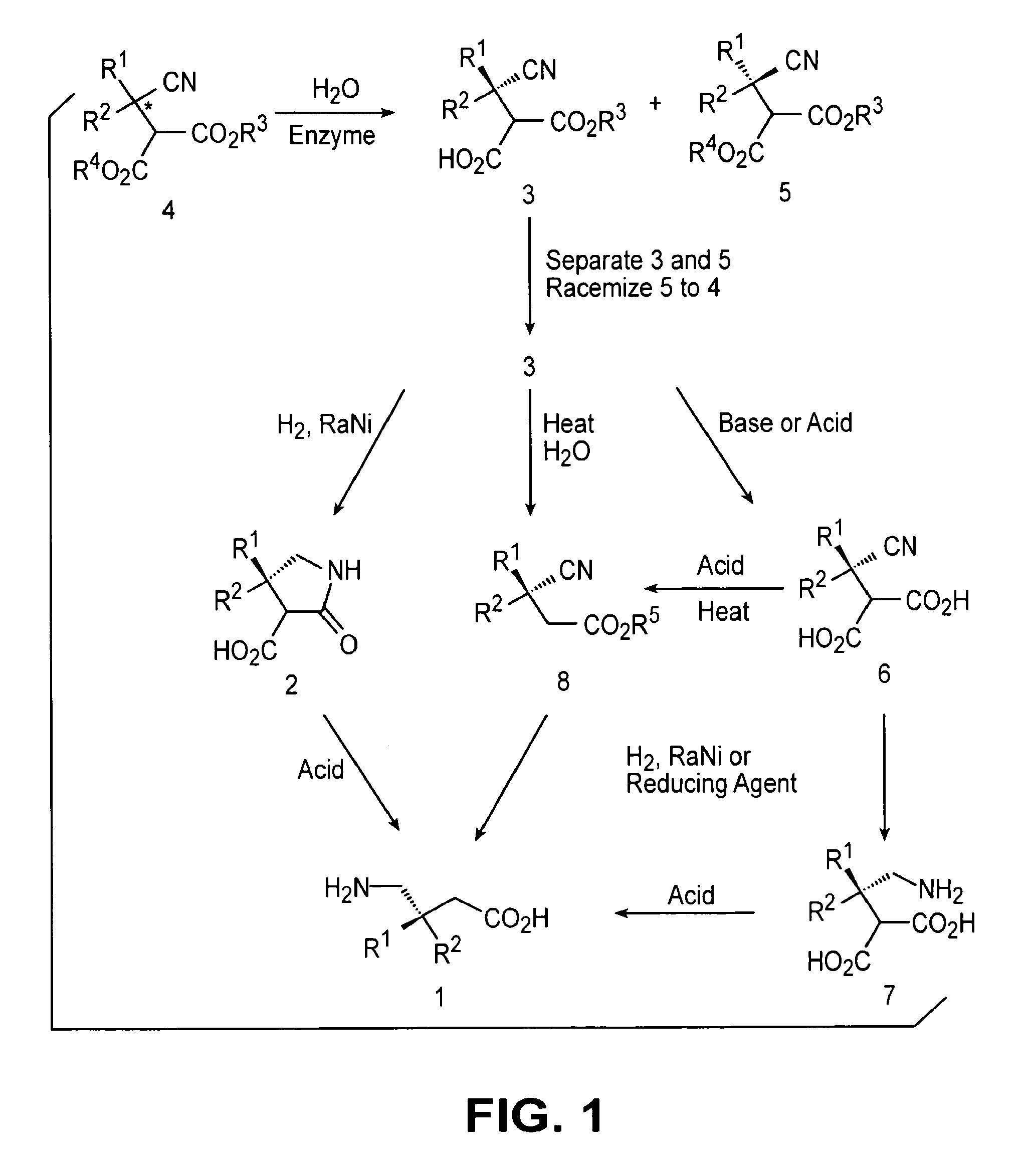 asymmetric synthesis pregabalin dosage