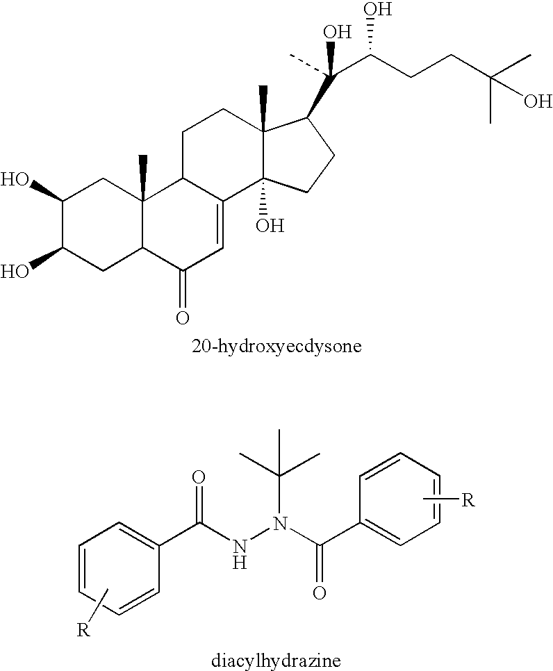 ecdysteroids a novel class of anabolic agents