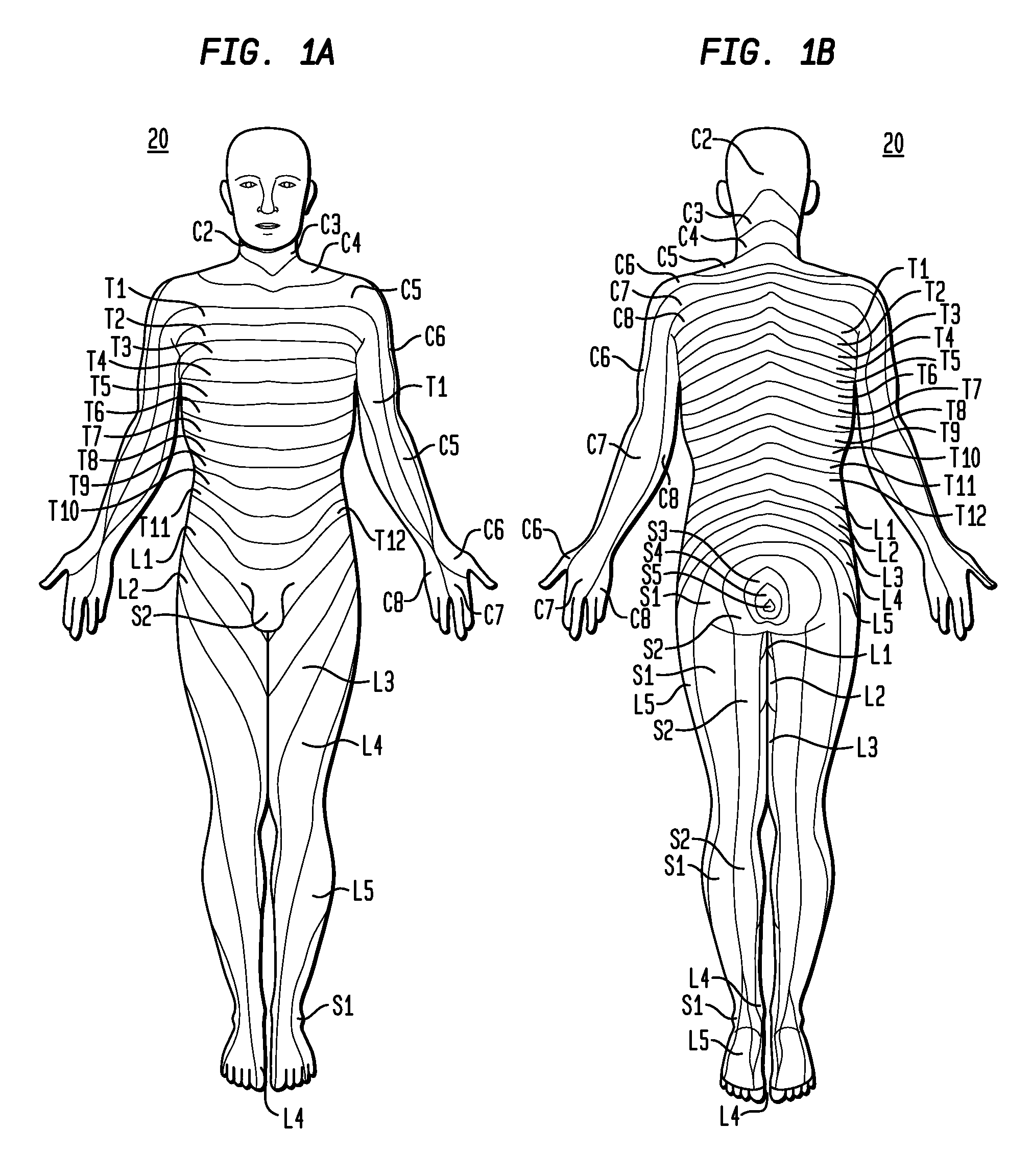 patent us8170683