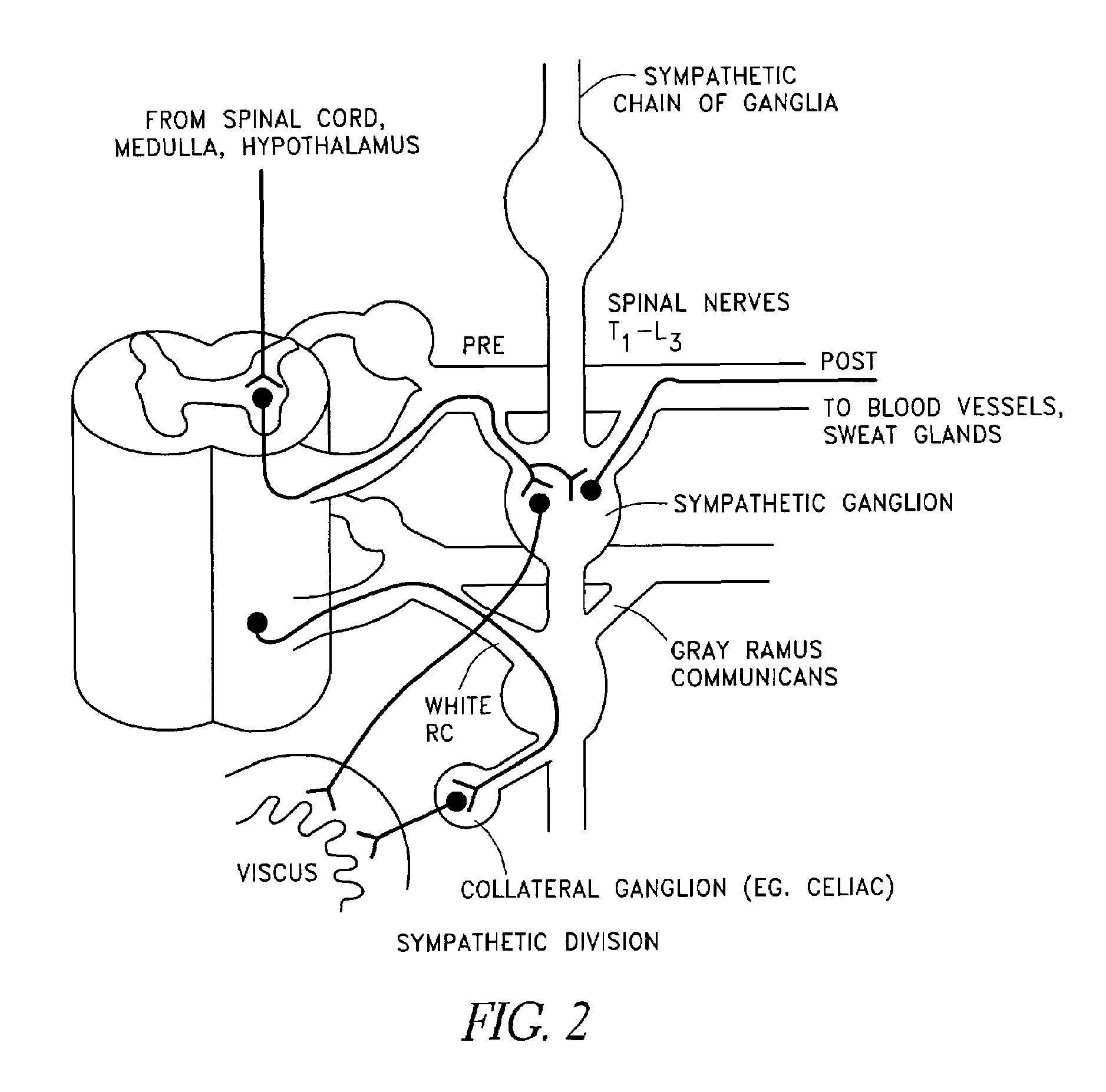 Patent Us8340772 Brown Adipose Tissue Utilization Through 1991 Chris Craft Wiring Diagram Drawing