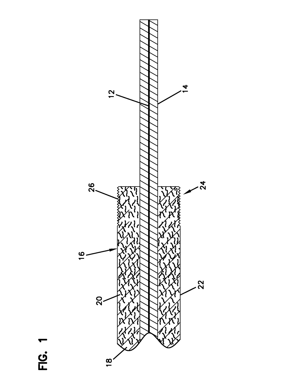 patent us8391658
