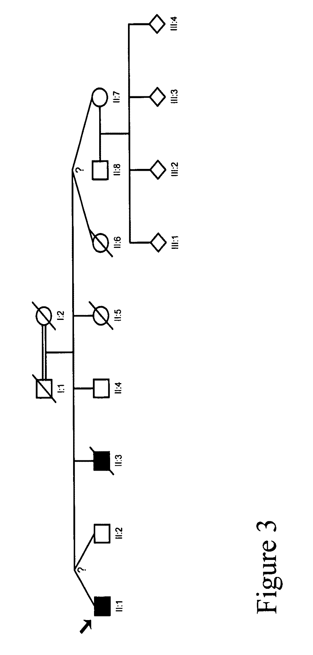 mutations in the scn9a gene A number sign (#) is used with this entry because primary erythermalgia is caused by heterozygous mutation in the scn9a gene (603415), encoding a voltage-gated sodium channel, on chromosome 2q24 small fiber neuropathy can also be caused by heterozygous mutation in the scn9a gene 'primary.