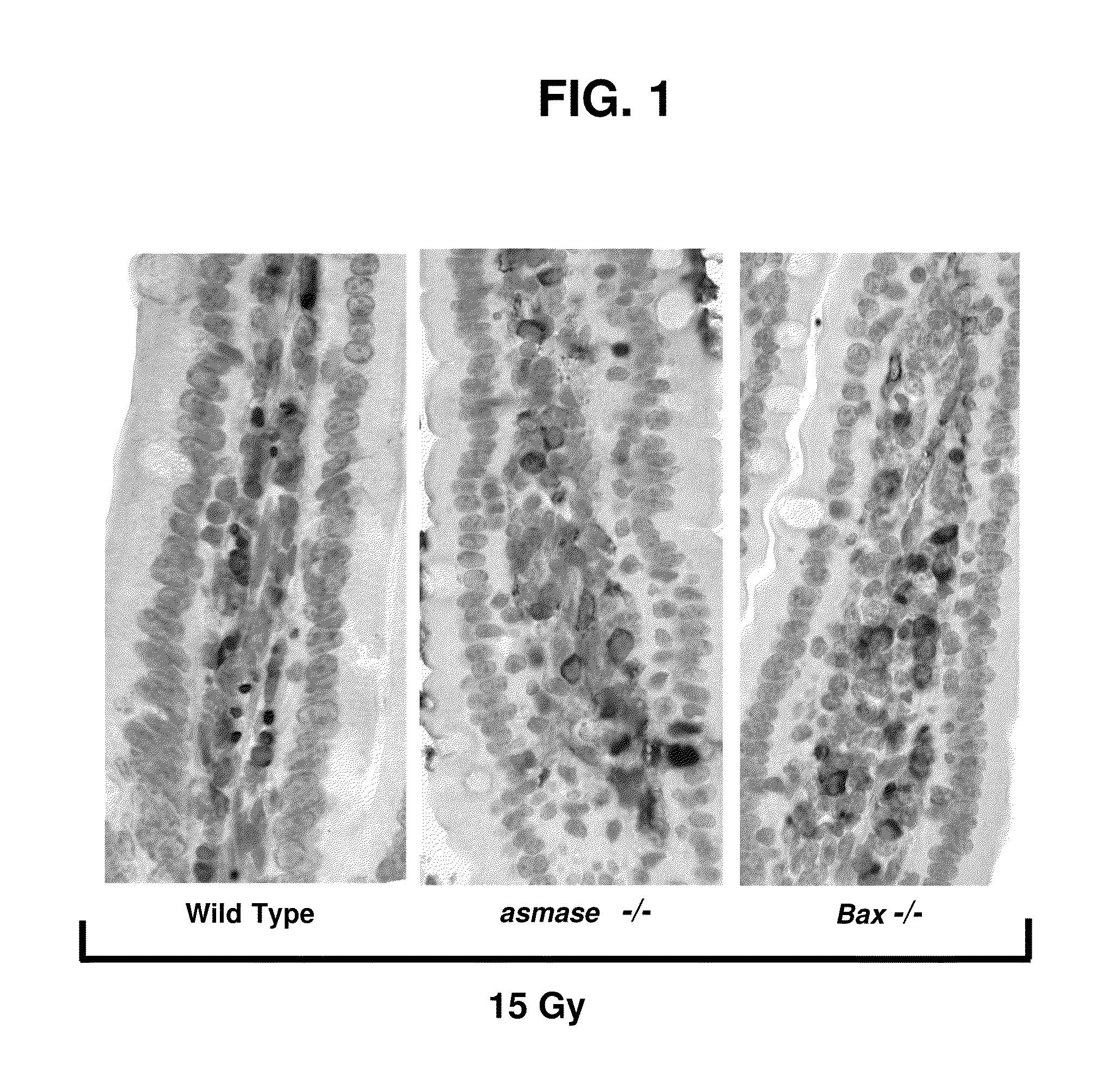 Patent US8562993...