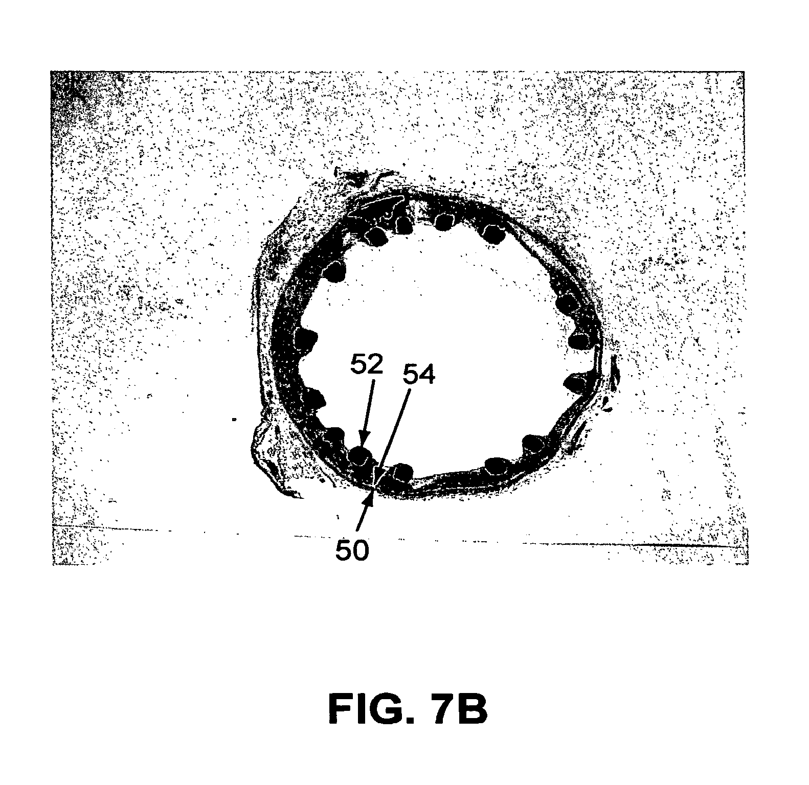 Patent Us8652501 Primer Layer Coatings Of A Material