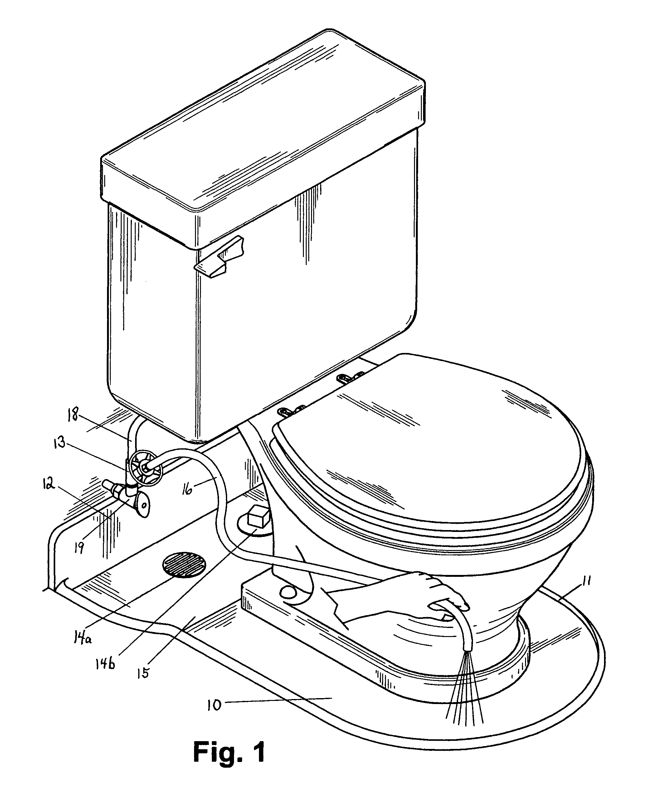 Patent Us8691024 Complete Sanitary System For The Toilet