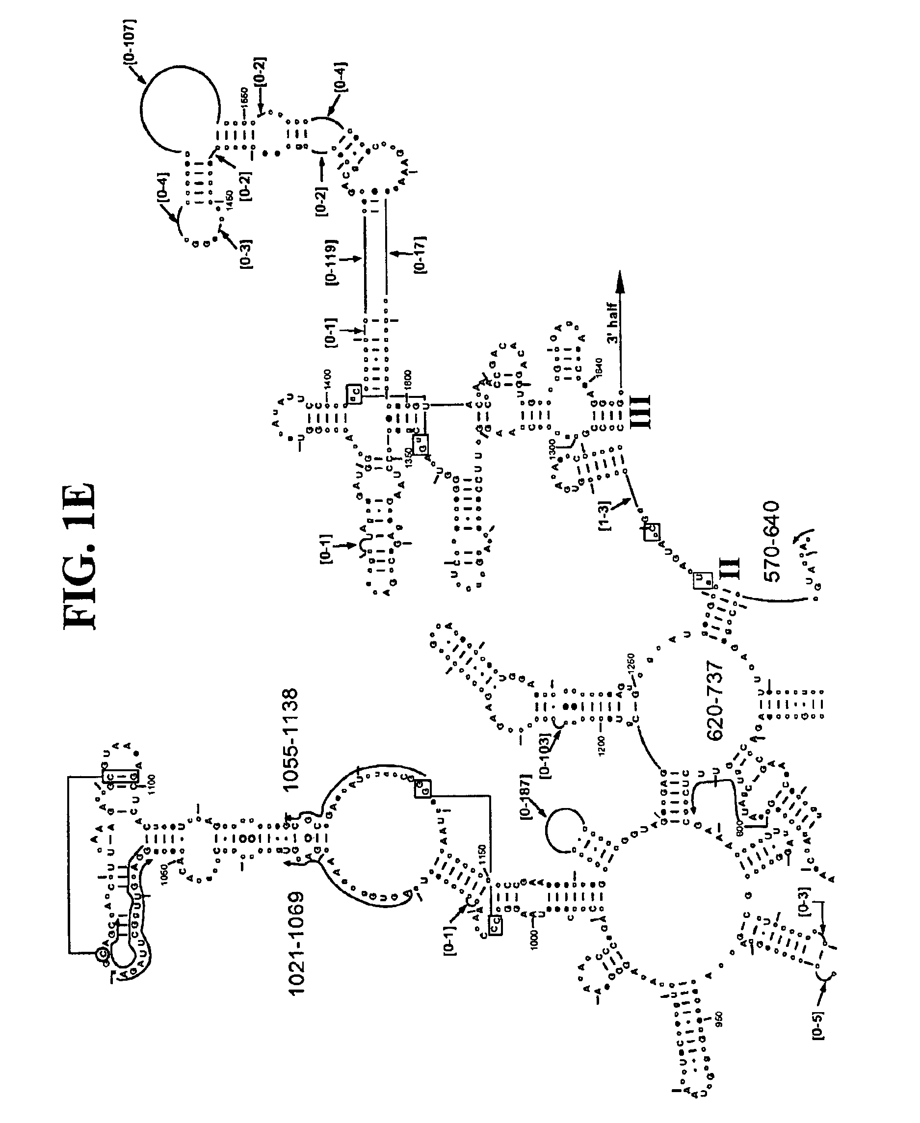 US08822156 20140902 D00009 patent us8822156 methods for rapid identification of pathogens on k12 permit slip template for georgia