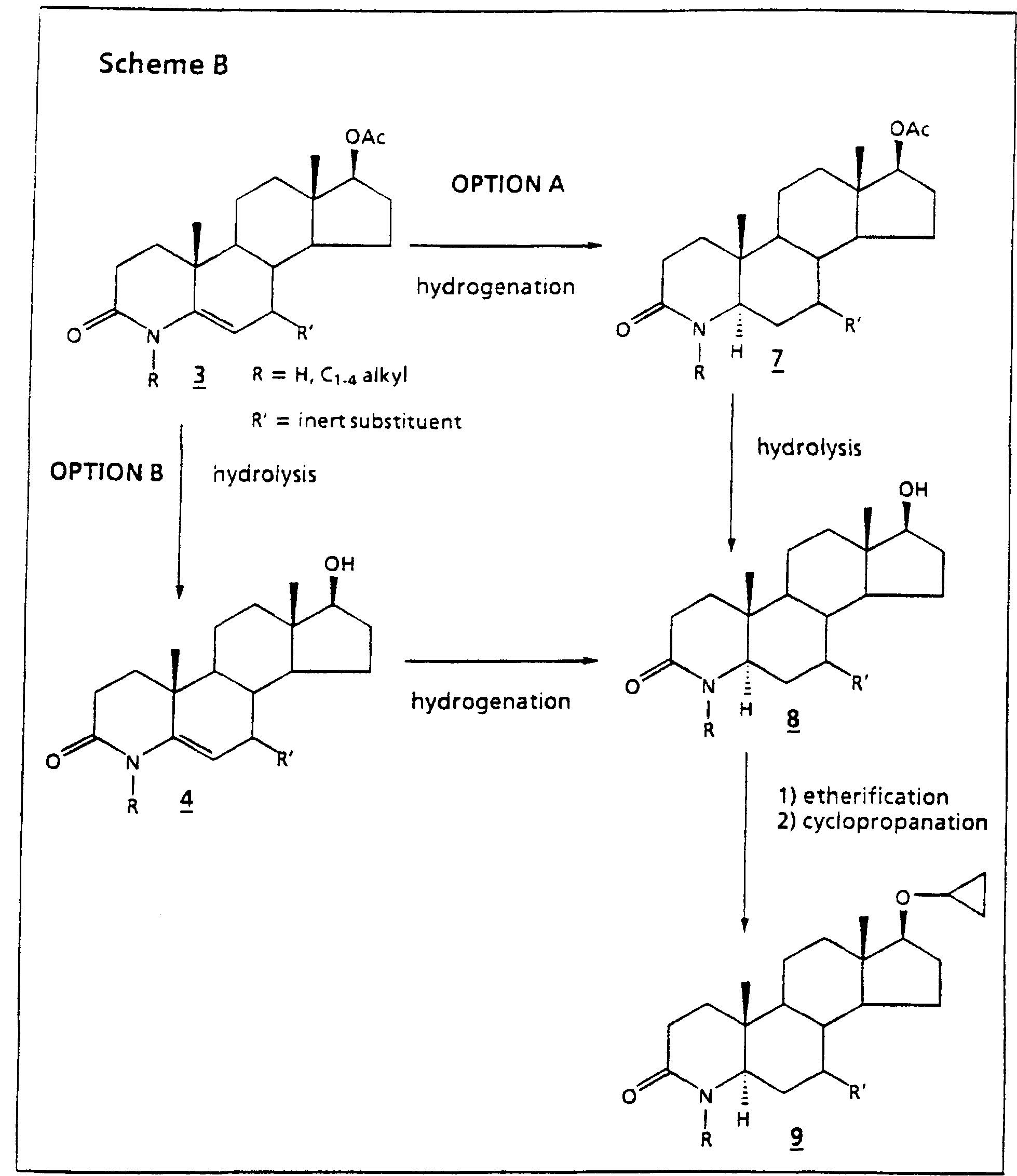 hydroxylation of steroids at carbon 21