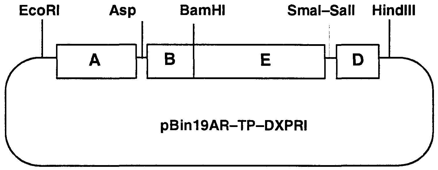 电路 电路图 电子 户型 户型图 平面图 原理图 1517_589