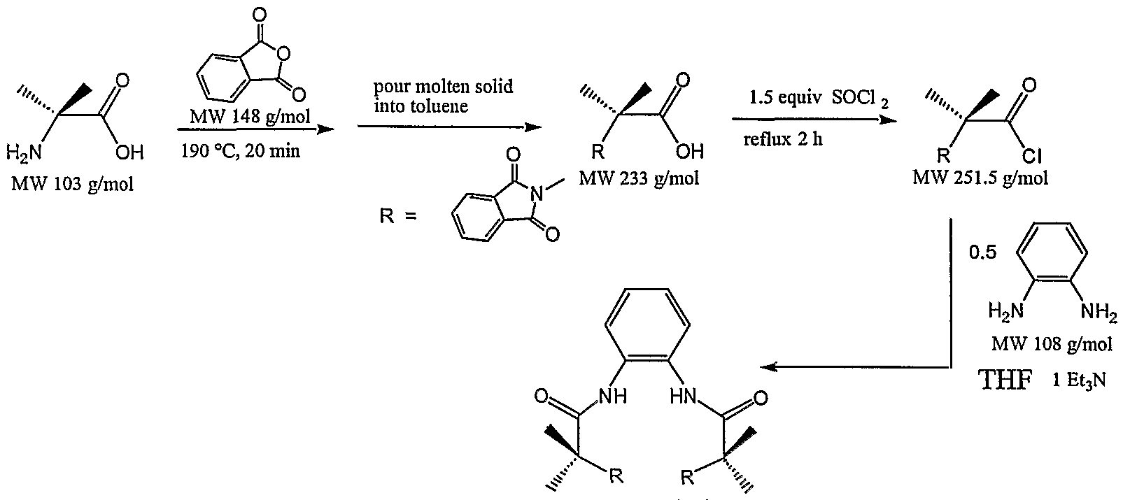 Synthesis of diethyl cyclobutane nerve net hypothesis