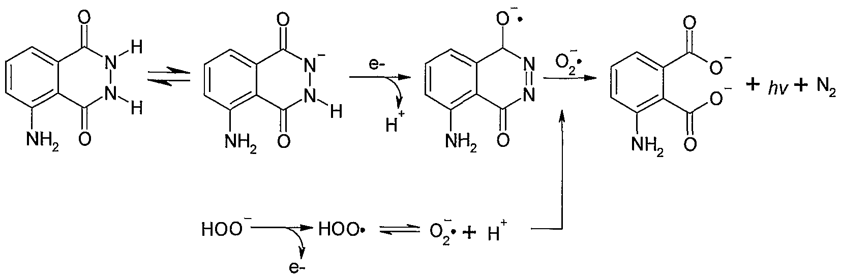 luminol synthesis 3-nitrophthalhydrazide, prepared in a previous video, is reduced with a readily available reducing agent (thiourea dioxide, tud) to luminol, which is.