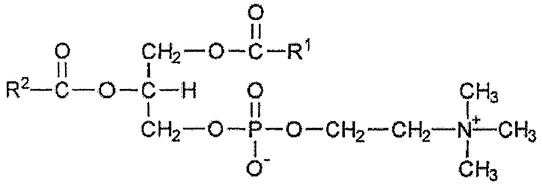 Triglyceride Molecule Structure Lecithin Structure Lec...