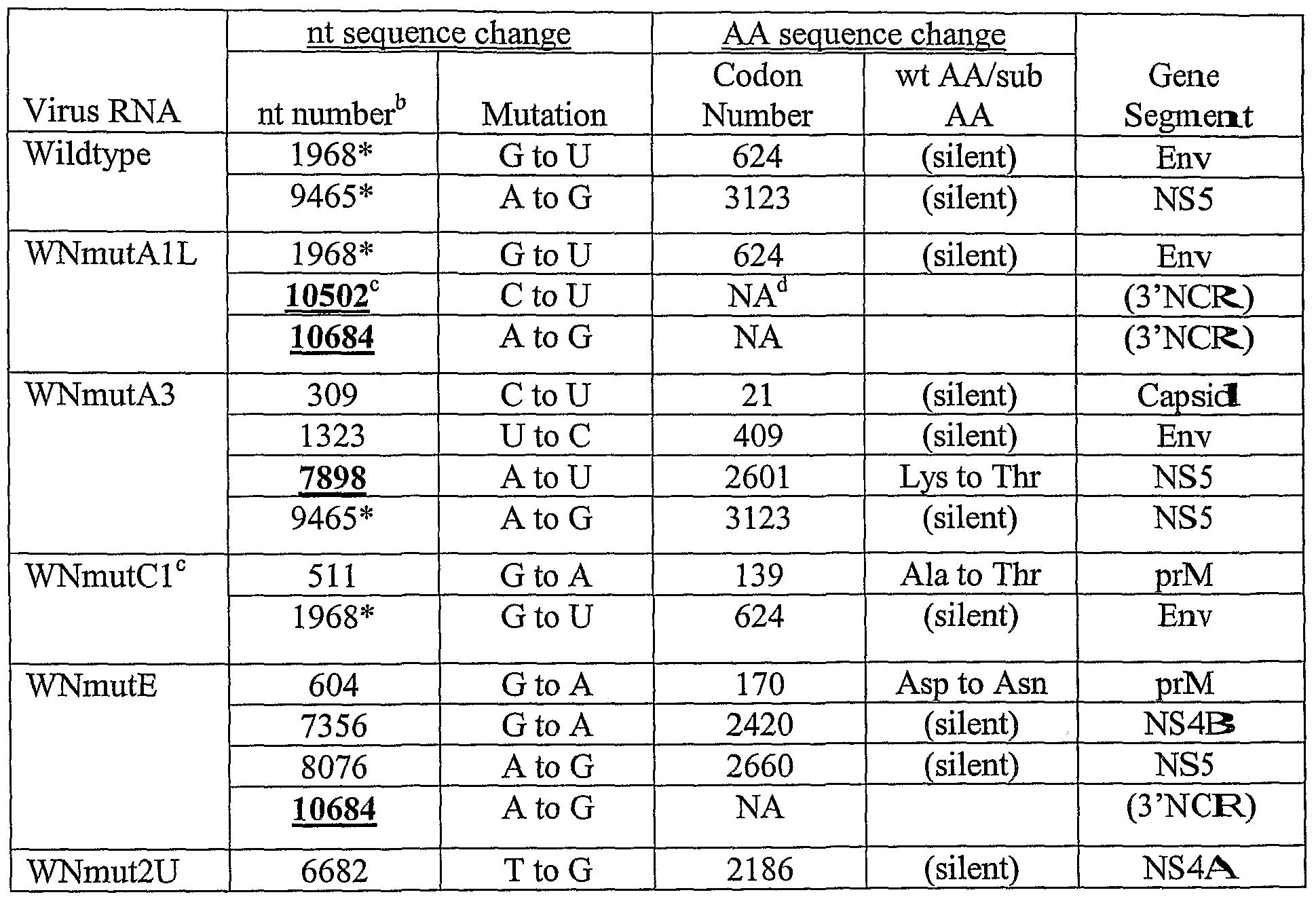 TABLE 2. Peak titers of WN 3'SL mutant viruses in BHK and C6/36 cells ...