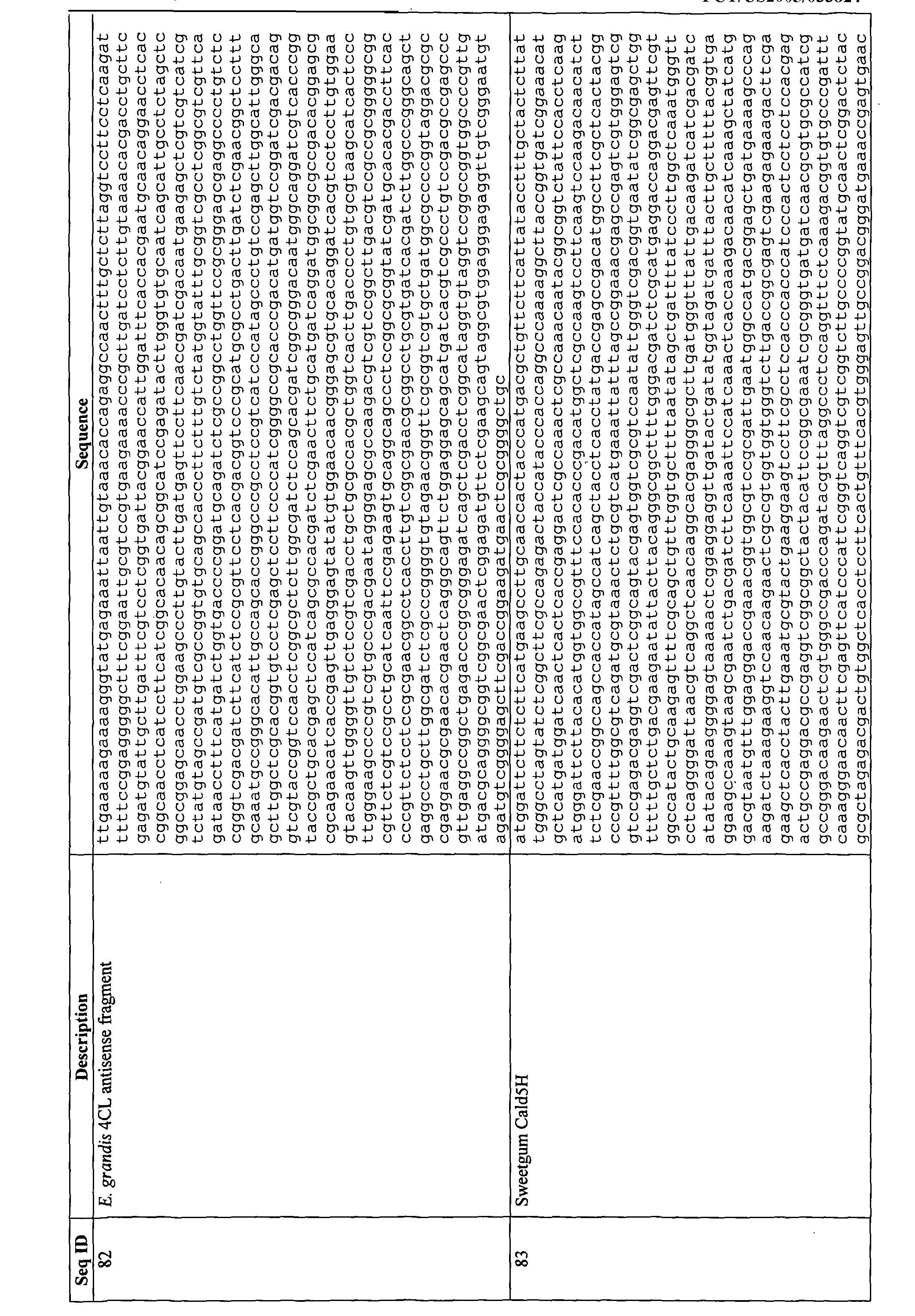 Patent Wo2006036698a2 Modification Of Plant Lignin