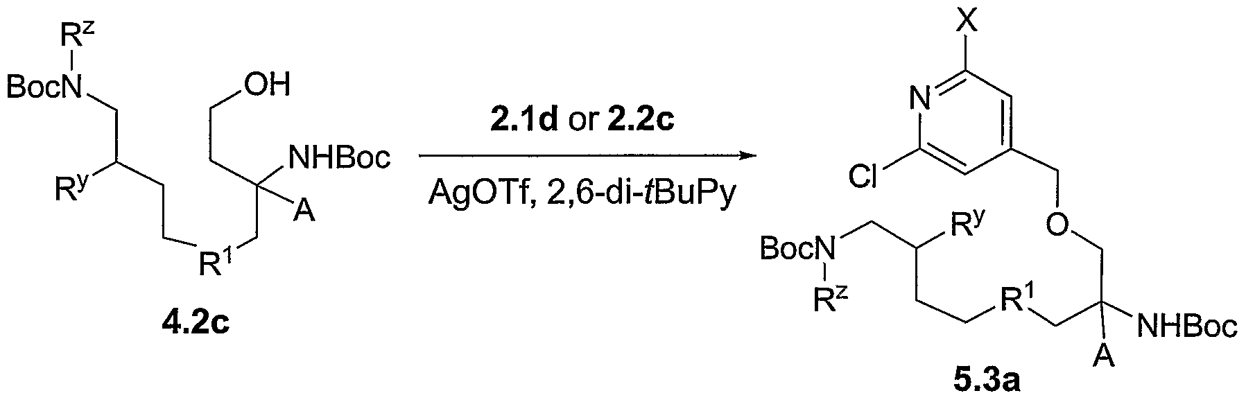 5b macrocyclic synthesis prelab Lab report on synthesis of cu(ii) - tetraphenylporphinate - artxy  molar mass  of pyrrole: 4 x 1201 + 1401 + 5 x 10079 = 6709 g mol-1  the oxidation of this  macrocycle by oxygen then generates the fully conjugated porphyrin ring.