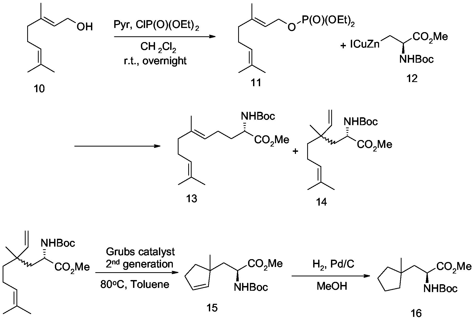 Grubb catalyst metathesis
