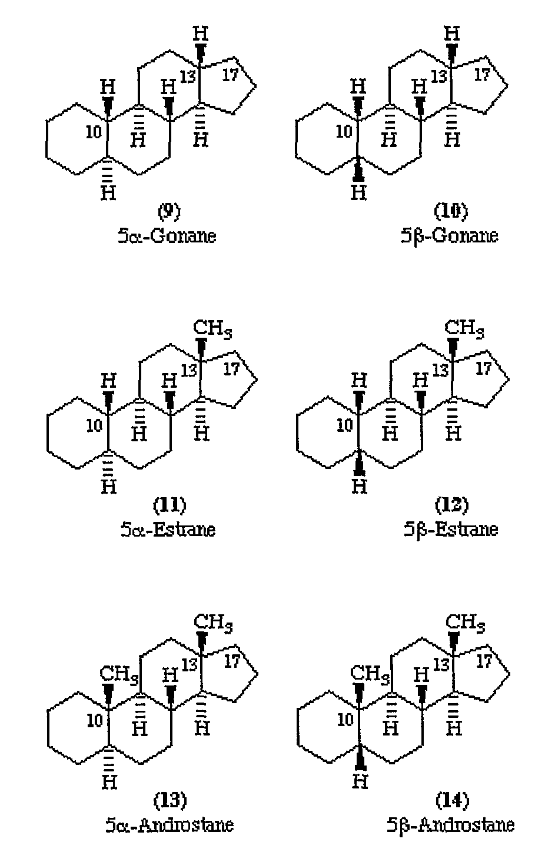17-methyl steroid