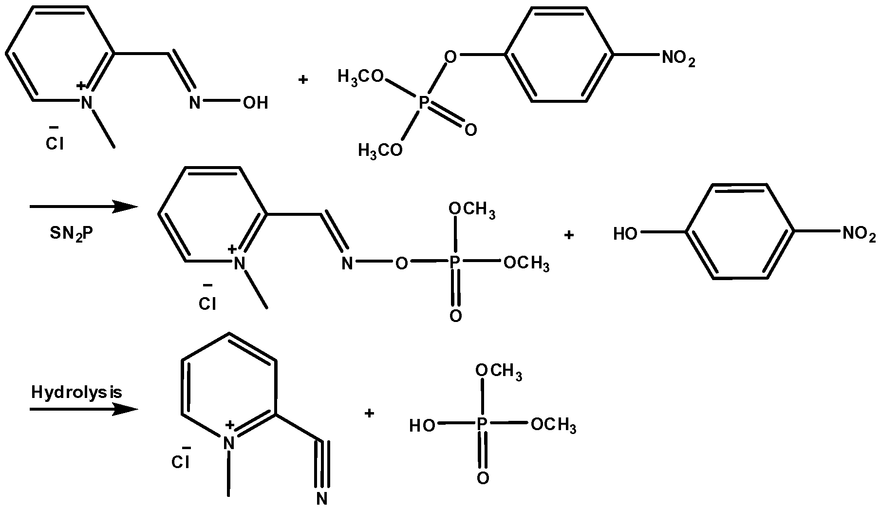 experiment 1 mechanism of nitrile oxide Preparation and reactivity of some stable nitrile oxides and  of the nitrile oxide moiety,2 eg 4-substituted-2,6-dimethylbenzonitrile oxides 1, or by.