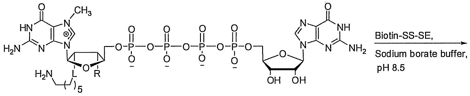 how to make 1 m sodium borate buffer