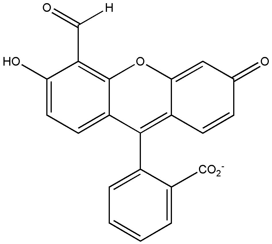 patent wo2009128606a2