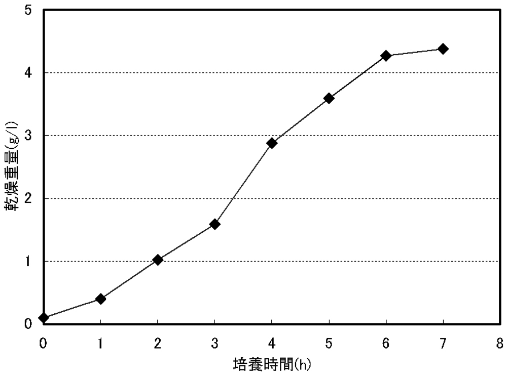 WO2009130895A1 - Process for production of fucoxanthin, and microalga for use in the process         - Google PatentsFamily