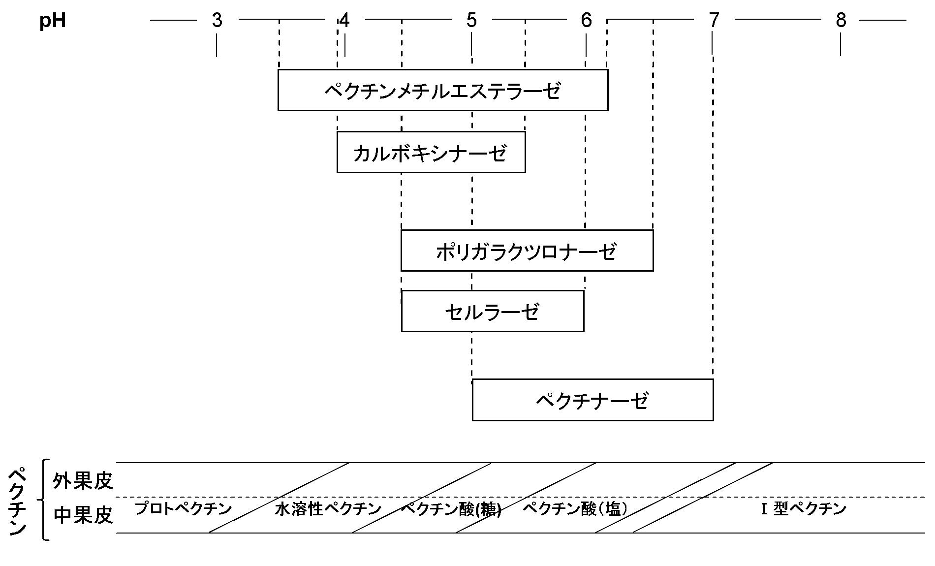 Patent WO2010007869A1 - 加工食...