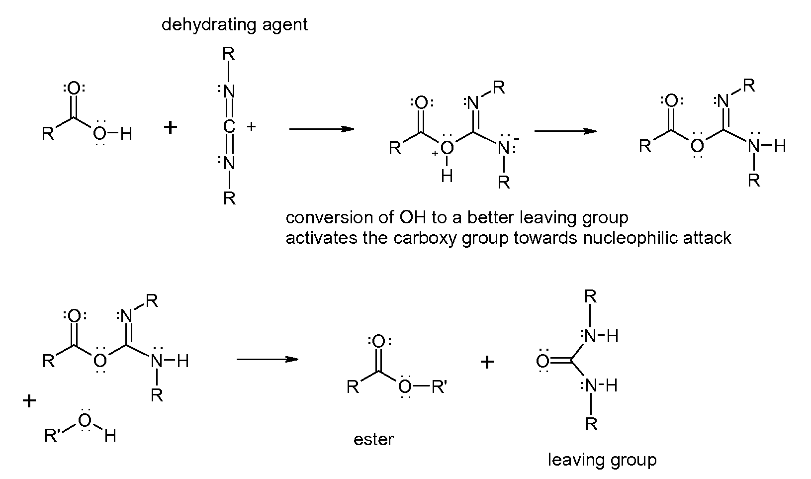 Dehydration Reaction Example chemical dehydrating agent