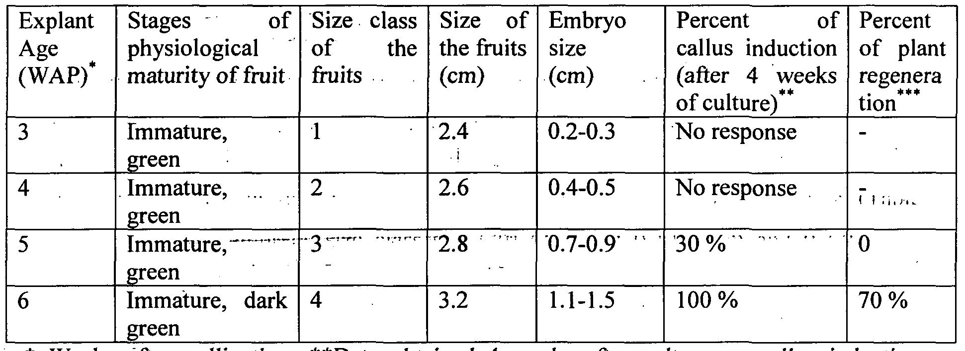 in vitro regeneration of jatropha curcas The tissue culture of jatropha always uses ms culture medium as basic  of ba/ iaa-based in vitro regeneration systems for jatropha curcas[j]journal of.