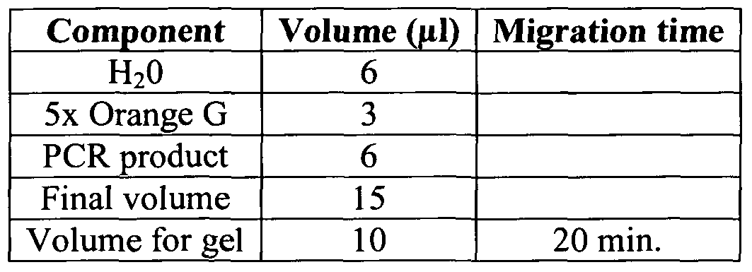 in vitro transcription and translation protocols pdf