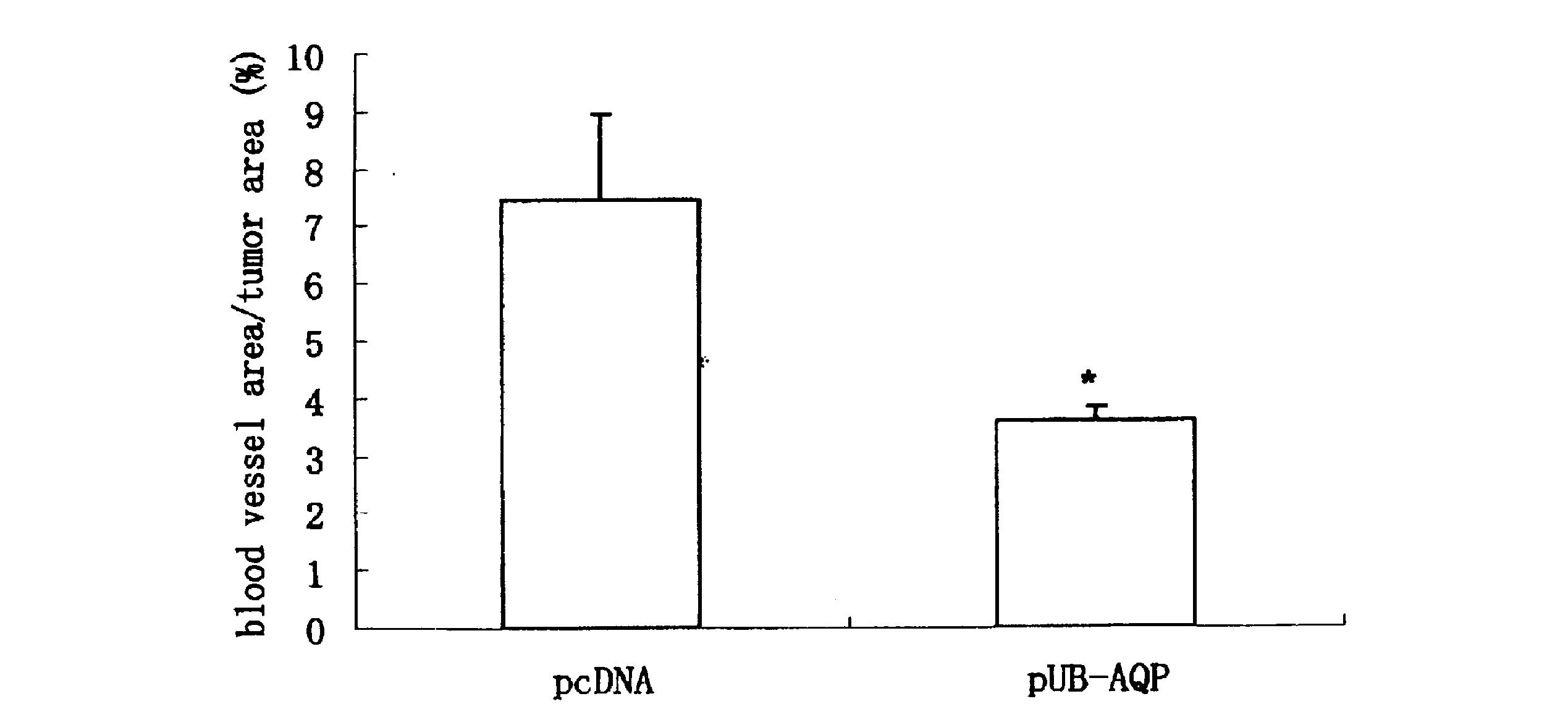 WO2010117071A1 - ユビキチン融合遺伝子およびそれを用いたdnaワクチン         - Google PatentsFamily