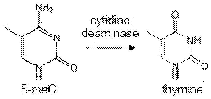 patent wo2011075627a1