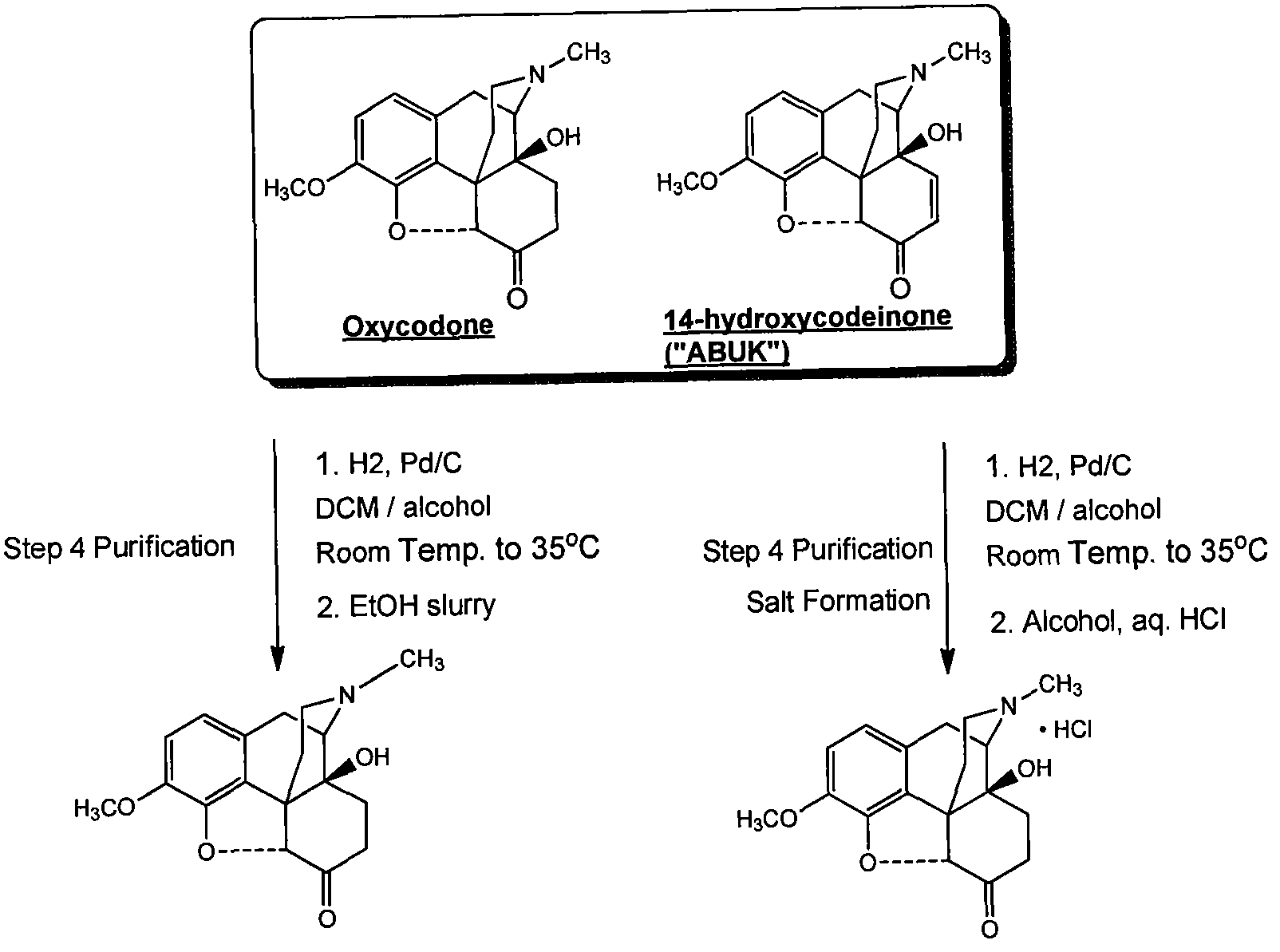 synthesising oxycodone